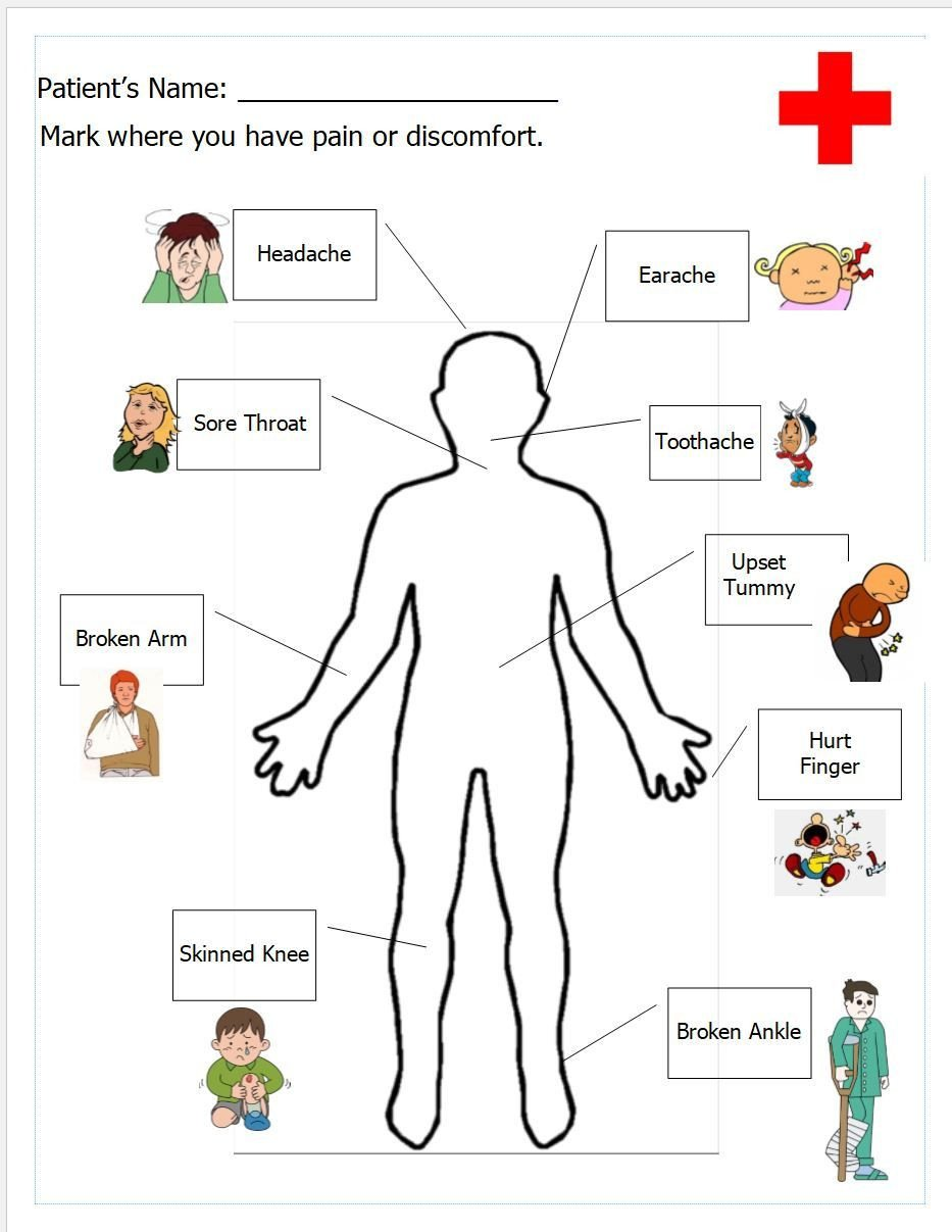 Free Human Body Systems Worksheets Free Printable Worksheet for Doctor S Office Pretend Play