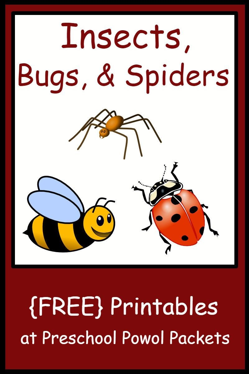 Free Insect Worksheets Insect Bug & Spider themed Free Preschool Printables