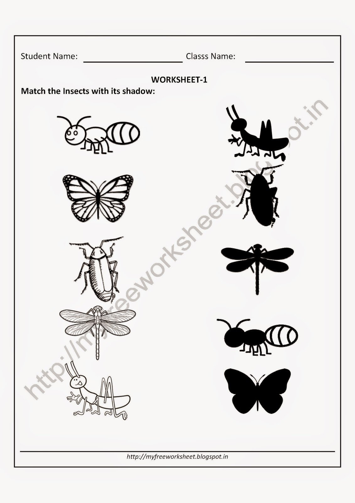 Free Insect Worksheets My Free Worksheet Pdf Free Worksheet for Nursery