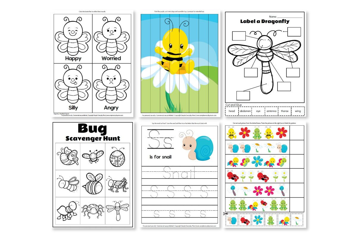 Free Insect Worksheets Printable Preschool Bug Activities for Learning & Fun
