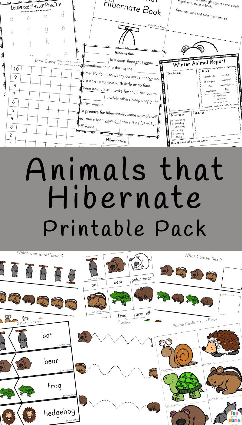 Hibernation Worksheet for Preschool Animals that Hibernate Printable Pack Fun with Mama