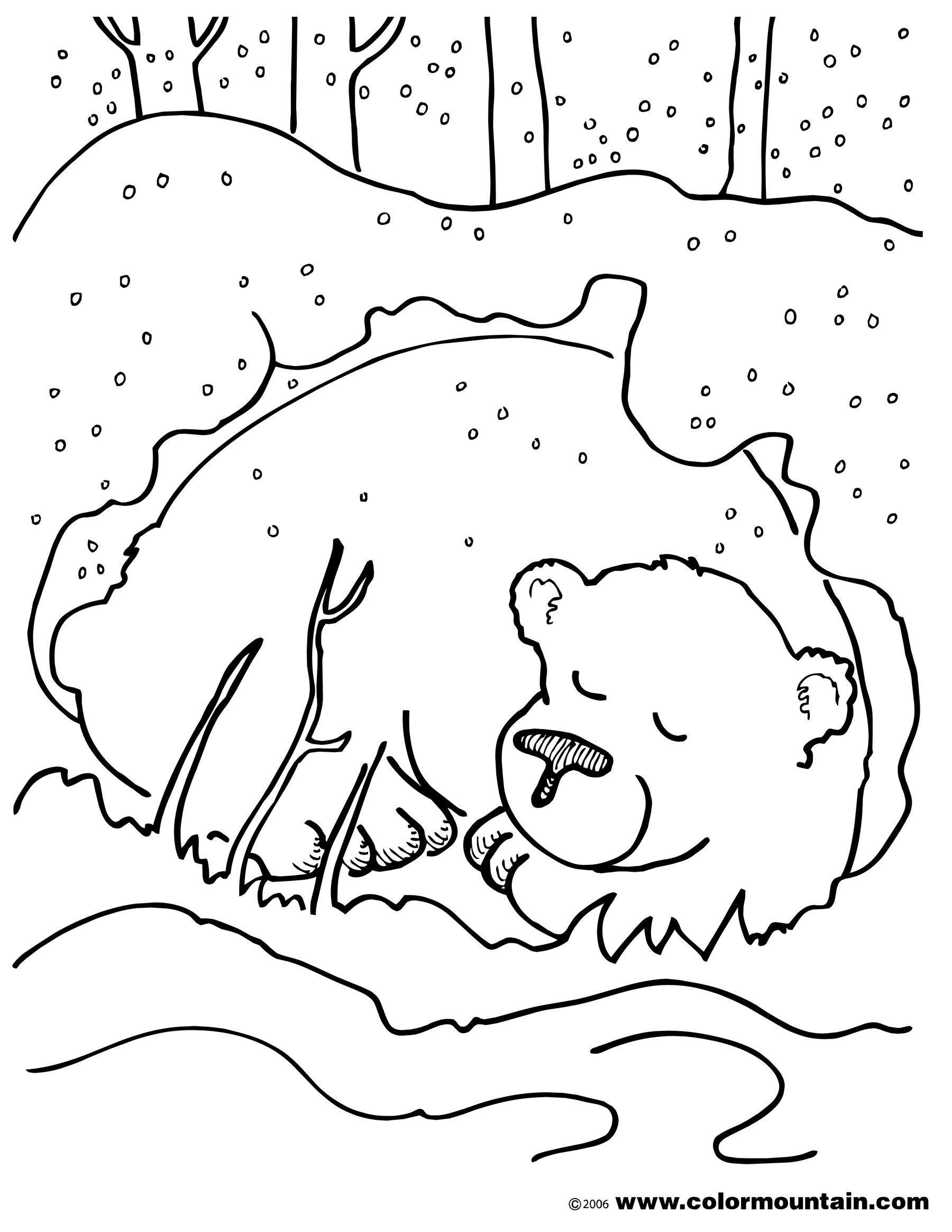 Hibernation Worksheet for Preschool Pin On Printable Worksheet for Kindergarten