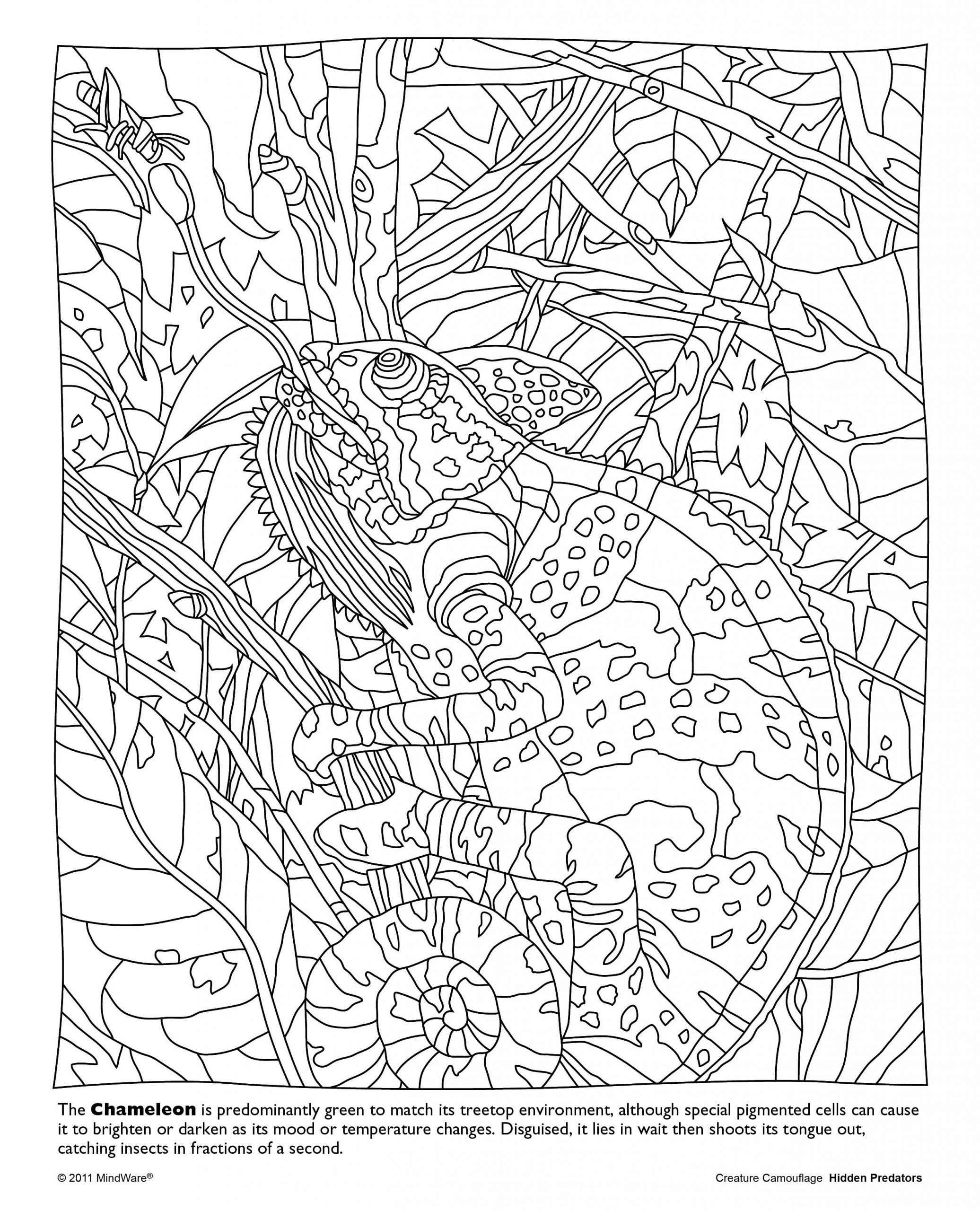 free printable coloring sheets for adults unique hidden predators coloring book mindware of free printable coloring sheets for adults scaled