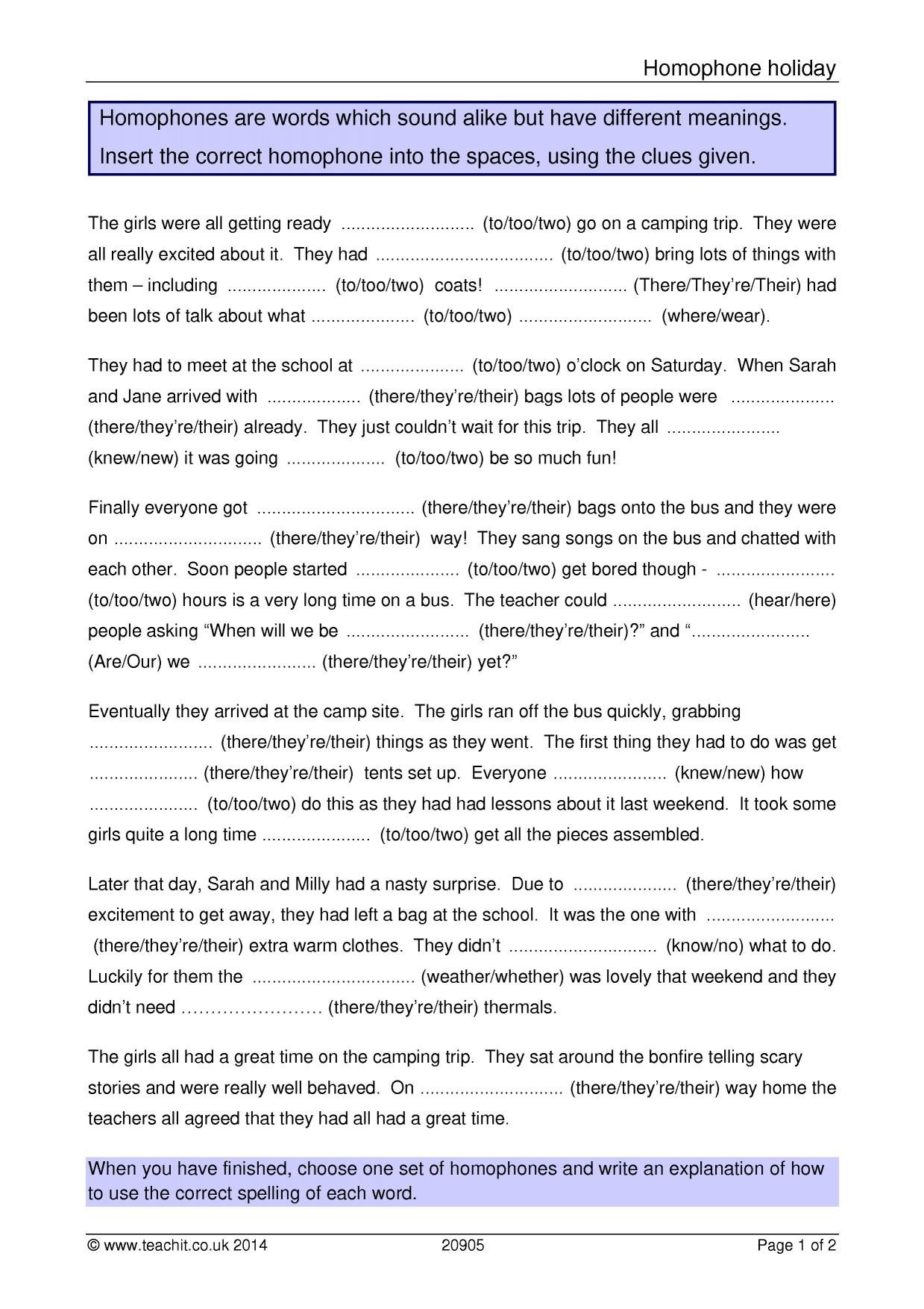 Homophone Worksheets Middle School to too Two there their theyre Worksheet