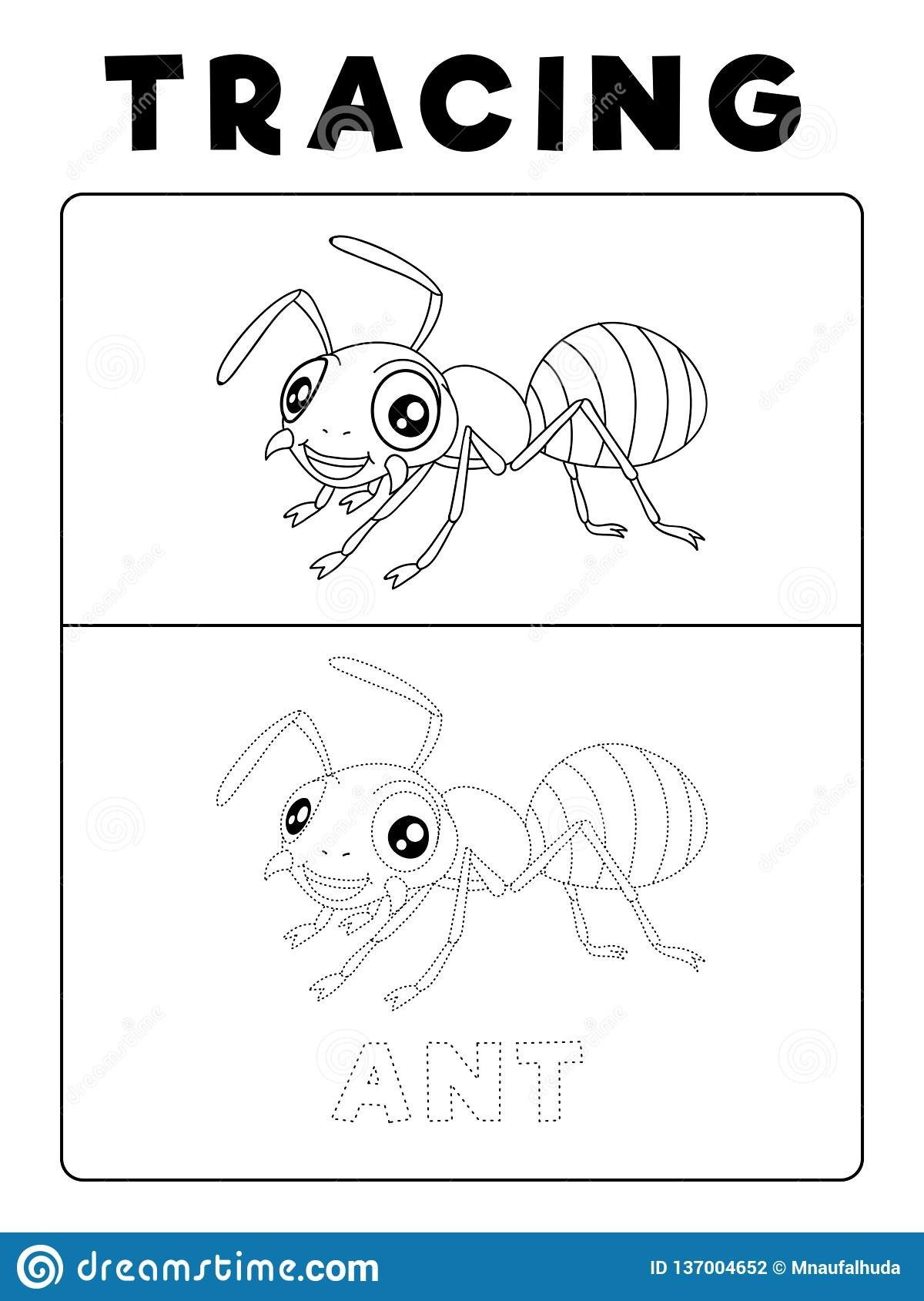 funny ant insect animal tracing book example preschool worksheet practicing fine motor skill vector cartoon illustration