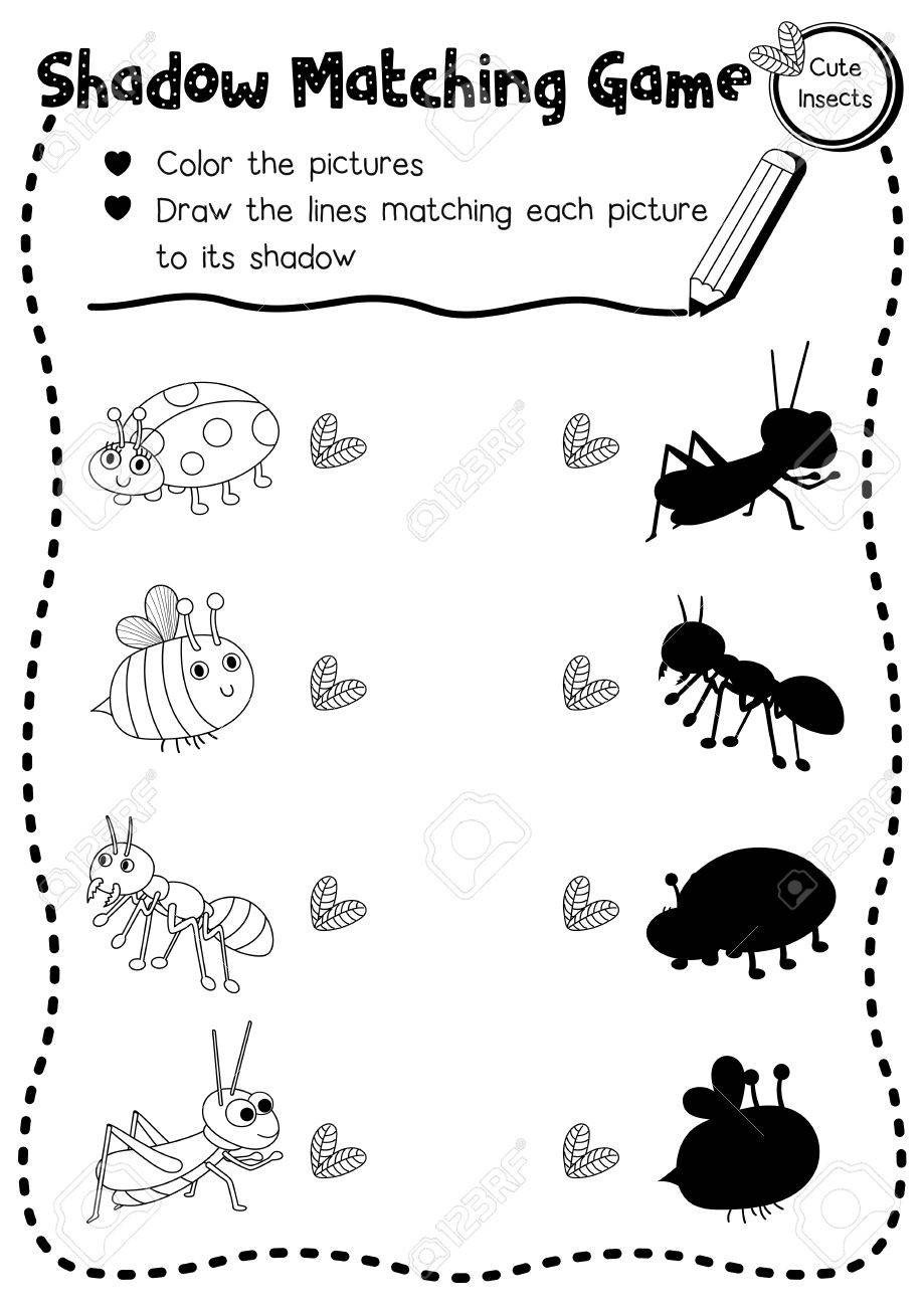 photo stock vector shadow matching game of insect bug animals for preschool kids activity worksheet layout in a4 colori