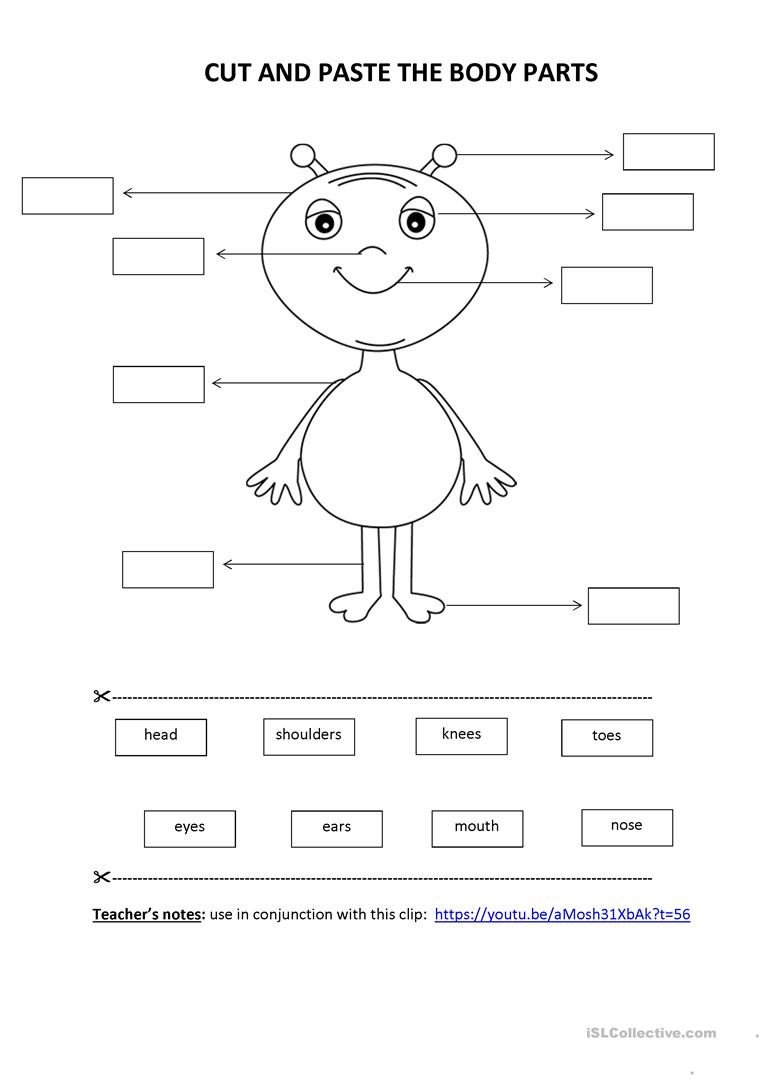 Kindergarten Worksheets Cut and Paste Cut & Paste Activity Body Parts English Esl Worksheets