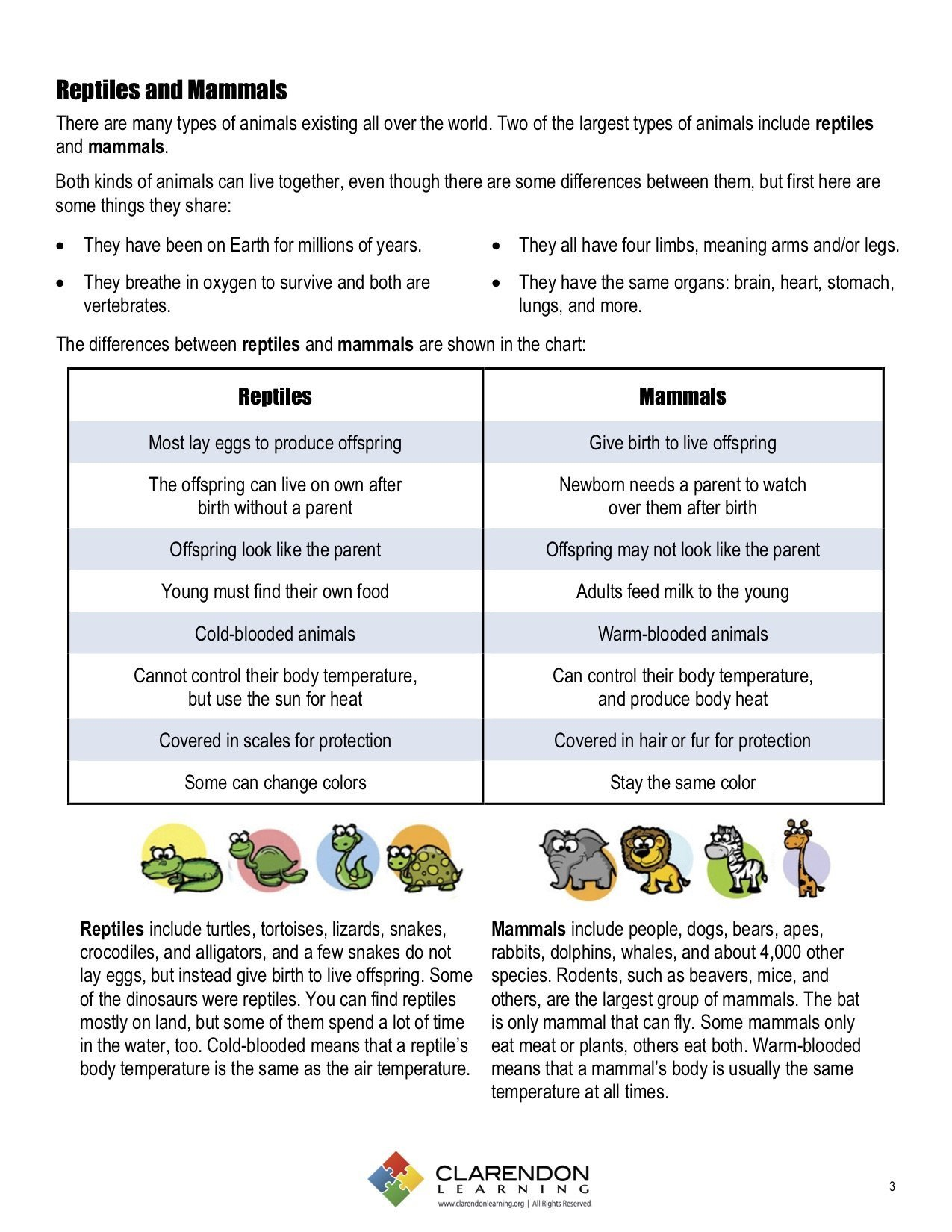 Mammal Worksheets First Grade Reptiles and Mammals
