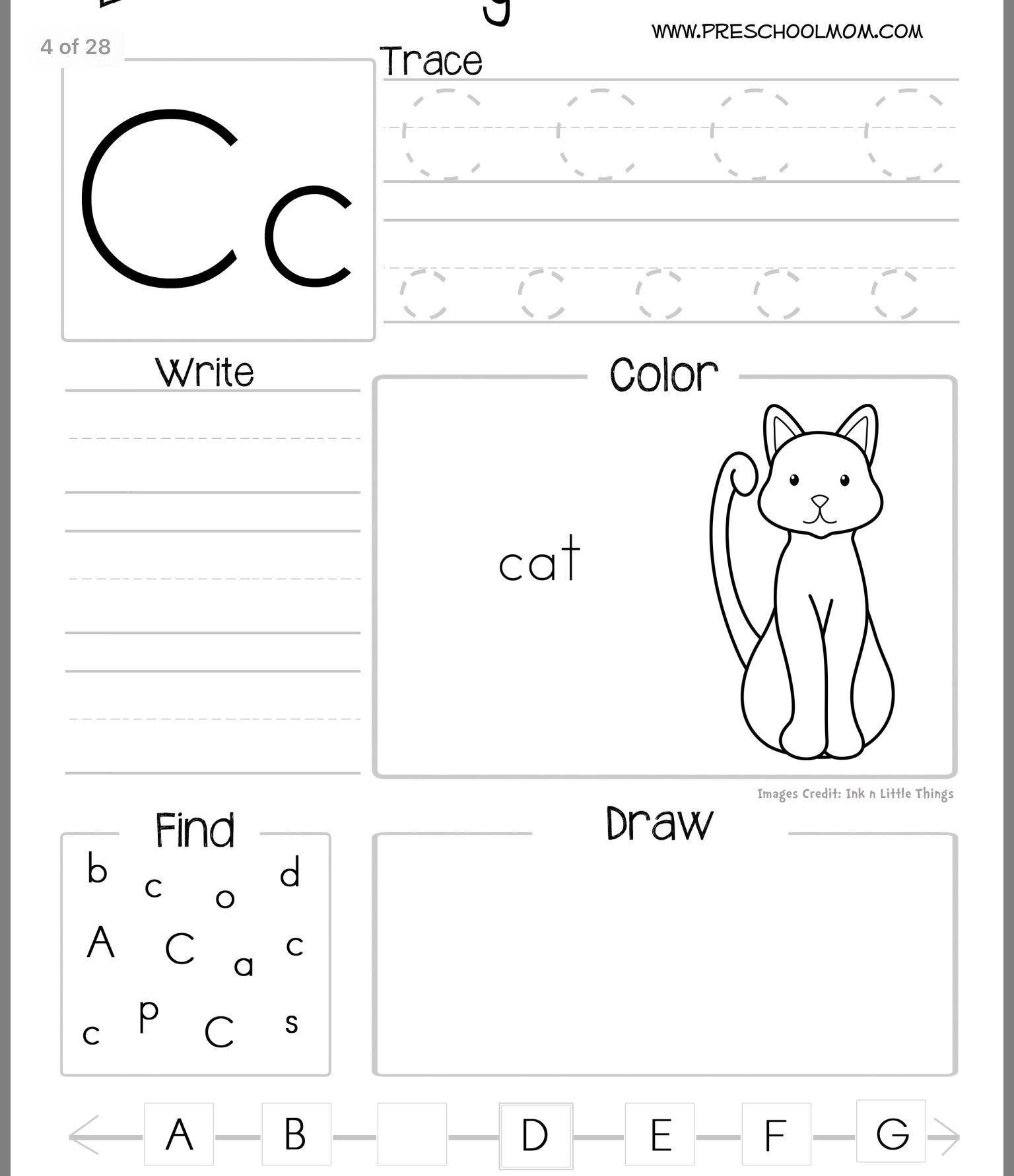 Mammal Worksheets First Grade Worksheets Classroom Mathematics Grade Caps 5th Cbse Maths