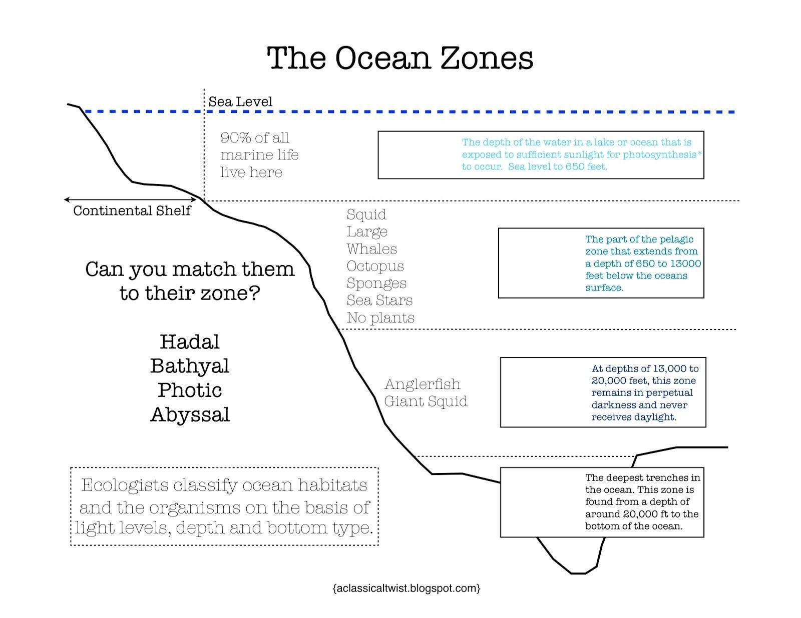 Ocean Floor Worksheets 5th Grade Diagram Oceans Worksheet