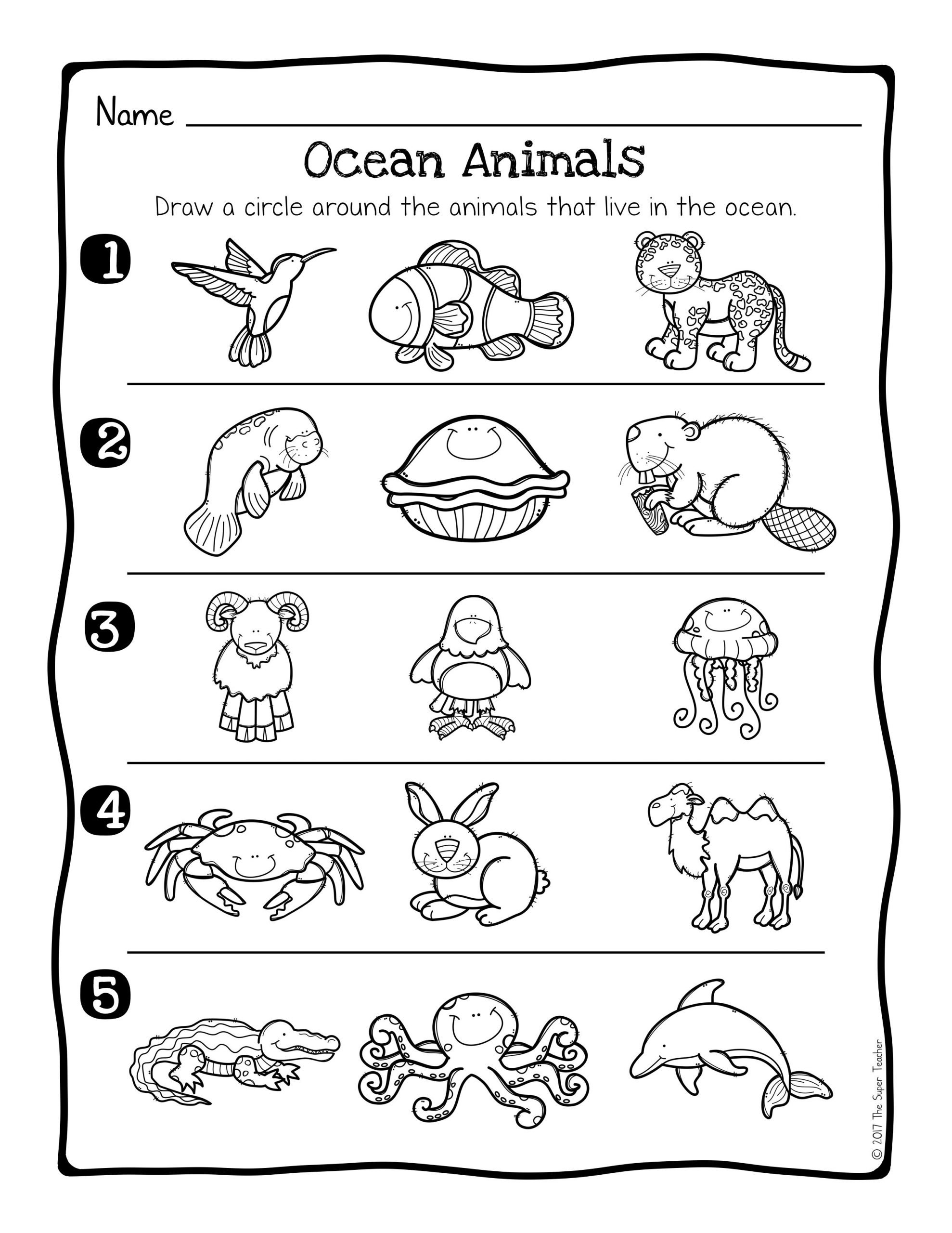 Ocean Worksheets for Preschool Animal Habitats Science Activity and Worksheets