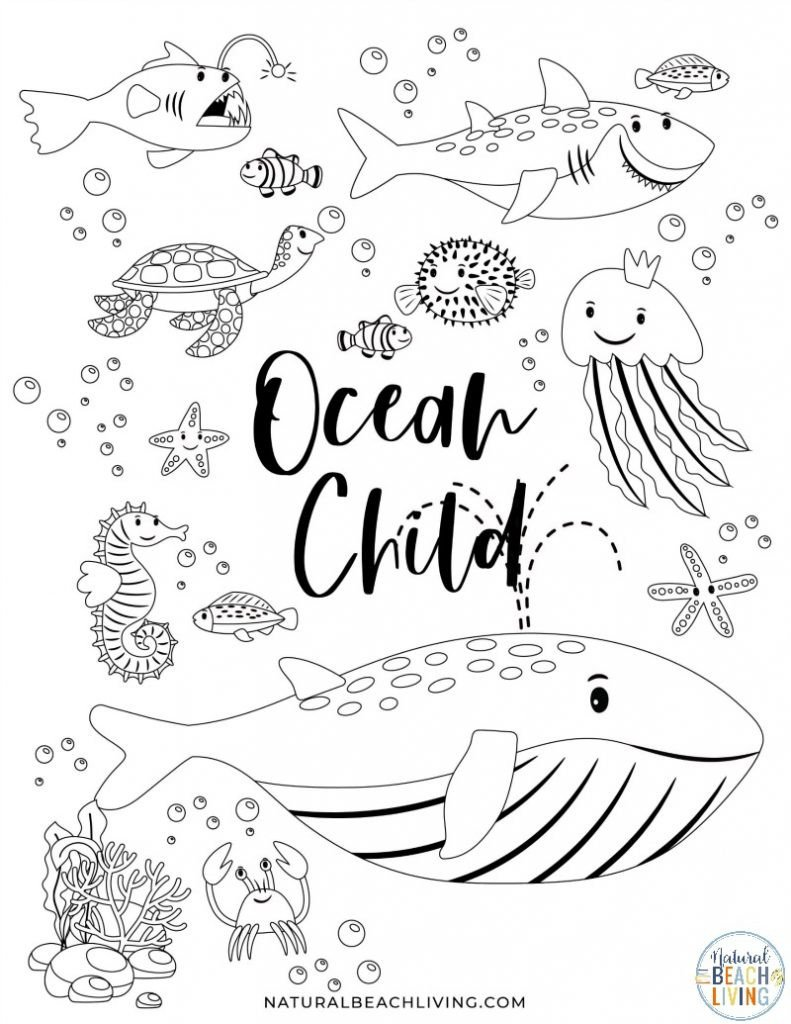 Oceans Worksheets for Kindergarten Free Printable Ocean Activity Pages for Preschoolers and