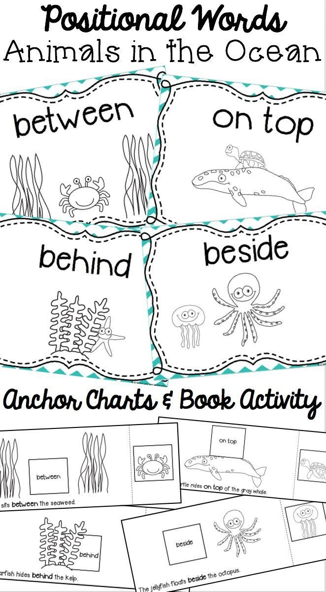Positional Words Worksheets for Preschool Positional Words Book Animals In the Ocean