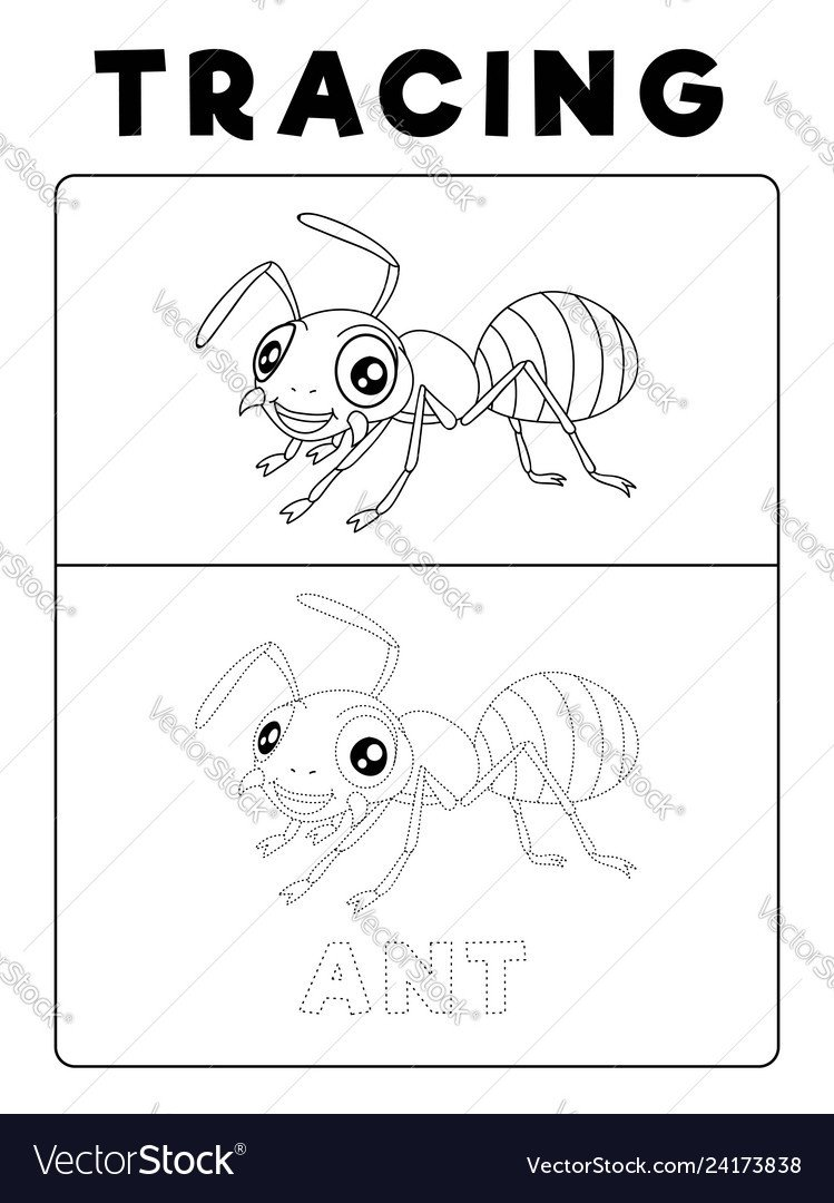 Preschool Bug Worksheets Funny Ant Insect Animal Tracing Book with Example
