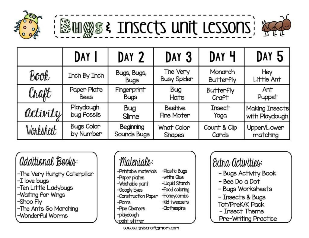 Preschool Bug Worksheets Insect Parts Worksheet Preschool