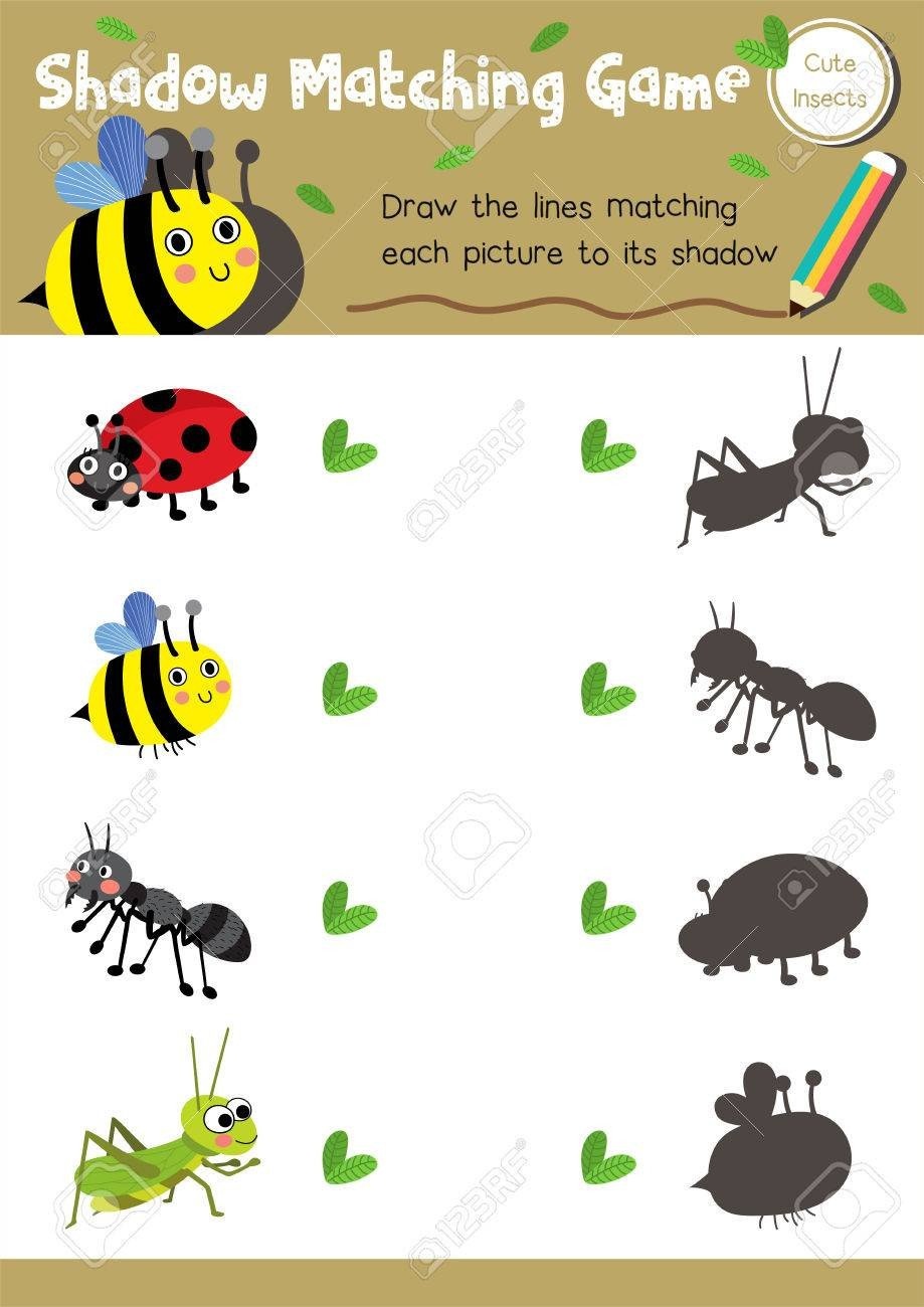 photo stock vector shadow matching game of insect bug animals for preschool kids activity worksheet layout in a4 colorf