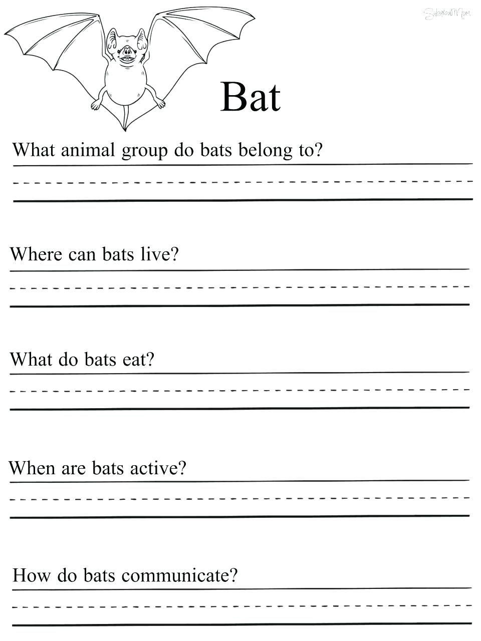 first grade science worksheets free printable prehension history solar
