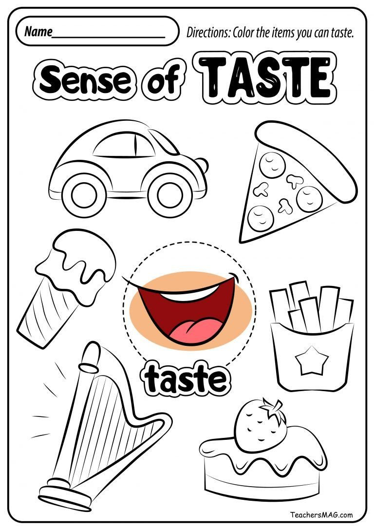 Sense Of Taste Worksheets Free Five Senses Worksheets Teachersmag
