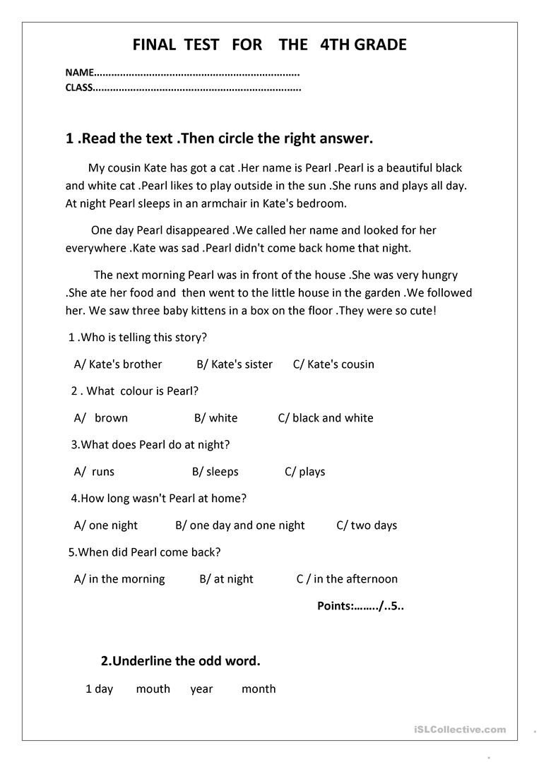 final test for the 4th grade tests 1