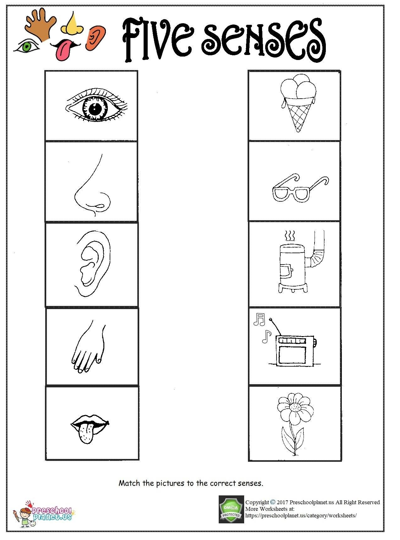5 Senses Worksheet for Kindergarten Printable Five Senses Worksheet – Preschoolplanet