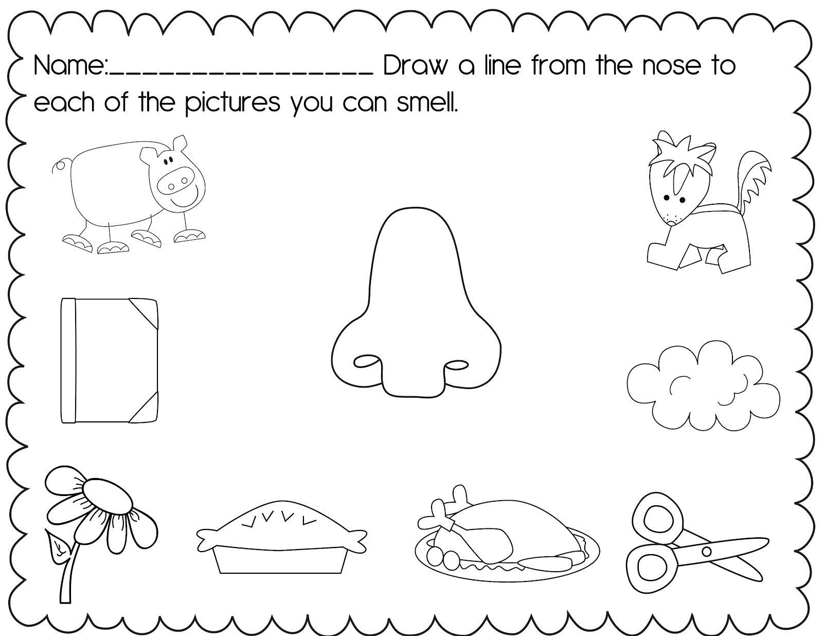 5 Senses Worksheet for Kindergarten the Crazy Pre K Classroom My 5 Senses Unit and A Freebie
