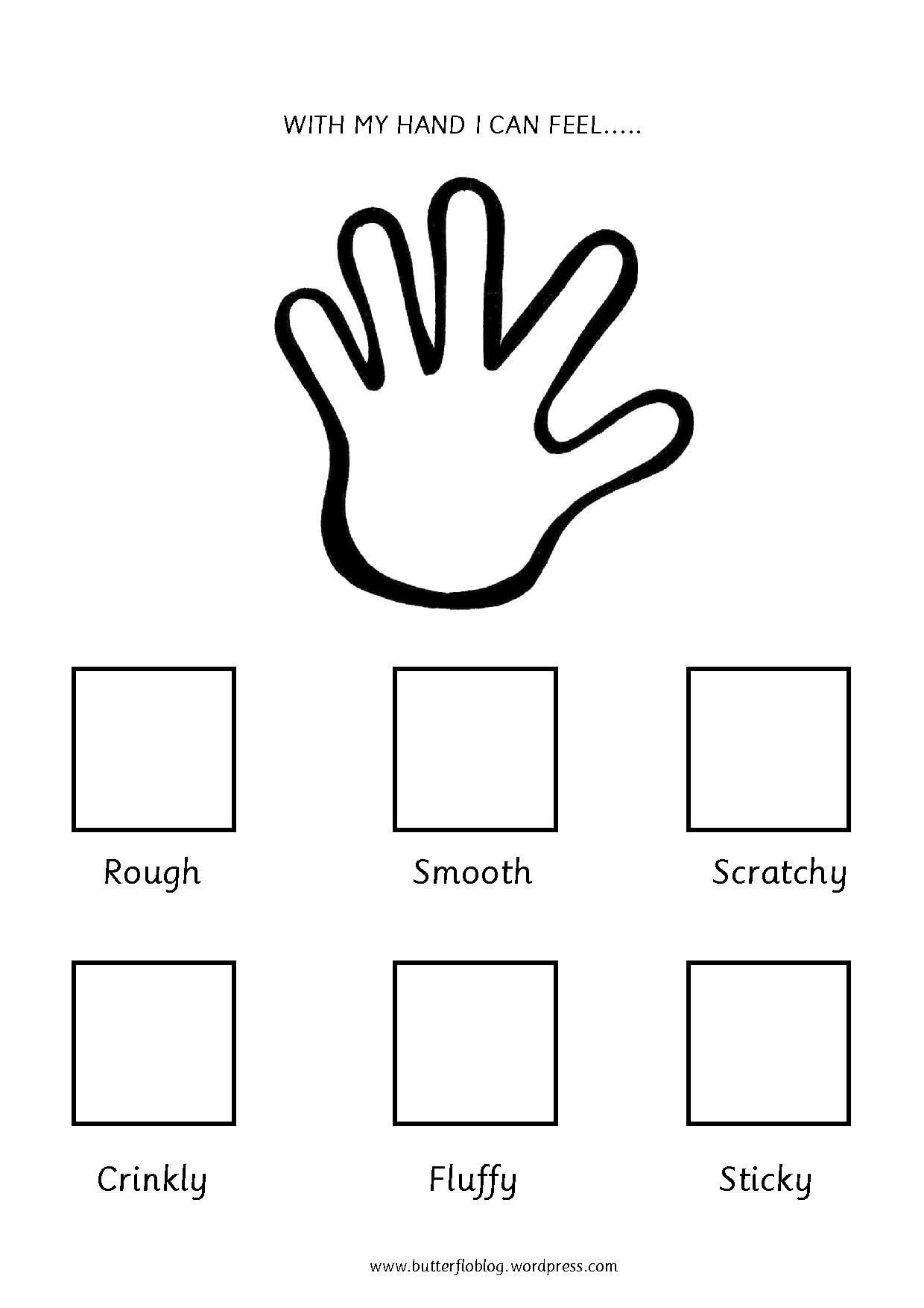 5 Senses Worksheet for Kindergarten the Five Senses touch