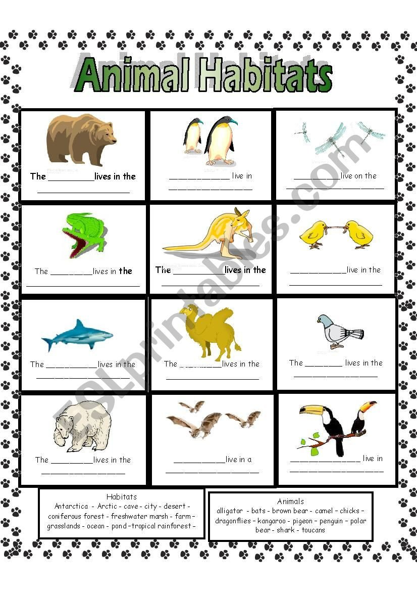 Animal Habitat Worksheets for Kindergarten Animal Habitats Esl Worksheet by Anna P