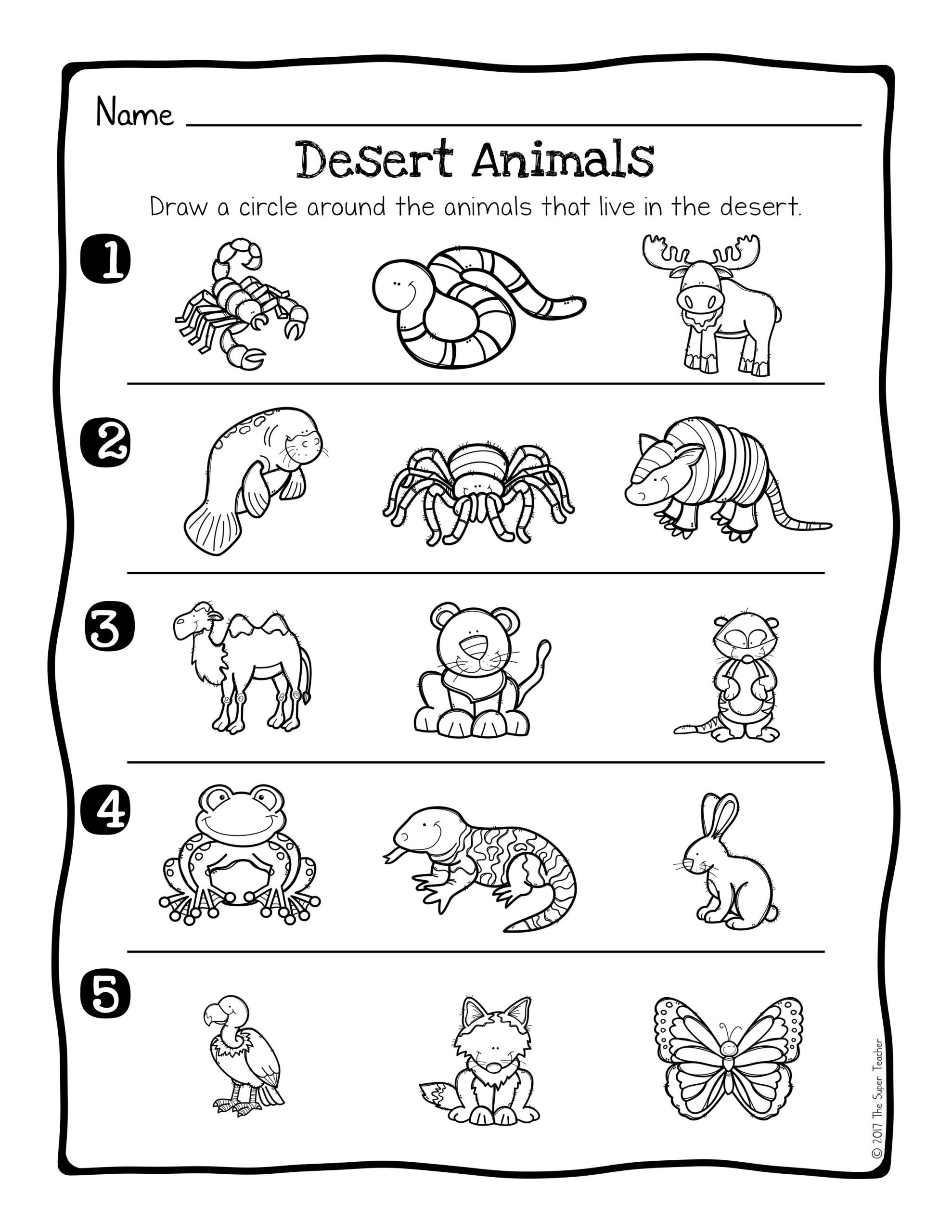 Animal Habitat Worksheets for Kindergarten Animal Habitats Science Activity and Worksheets