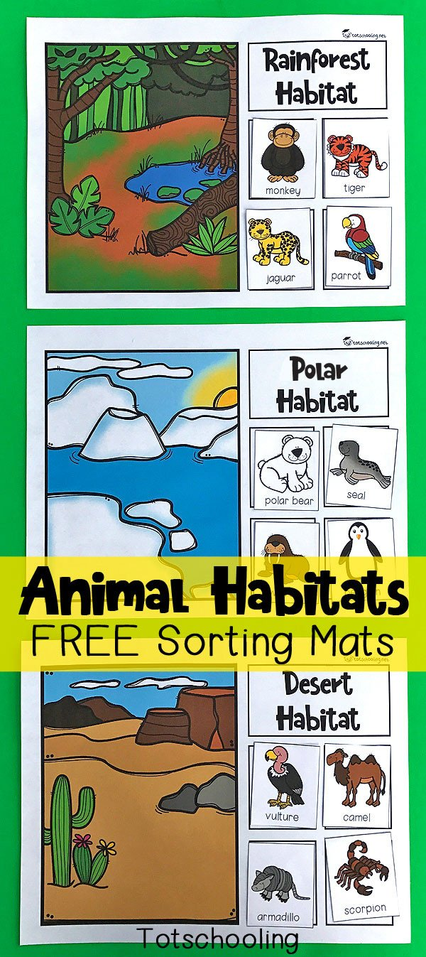 Animal Habitat Worksheets for Kindergarten Animal Habitats sorting Mats