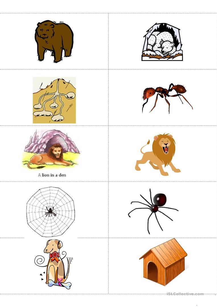 Animal Habitat Worksheets for Kindergarten Animals and their Habitat Memory Flashcards English Esl
