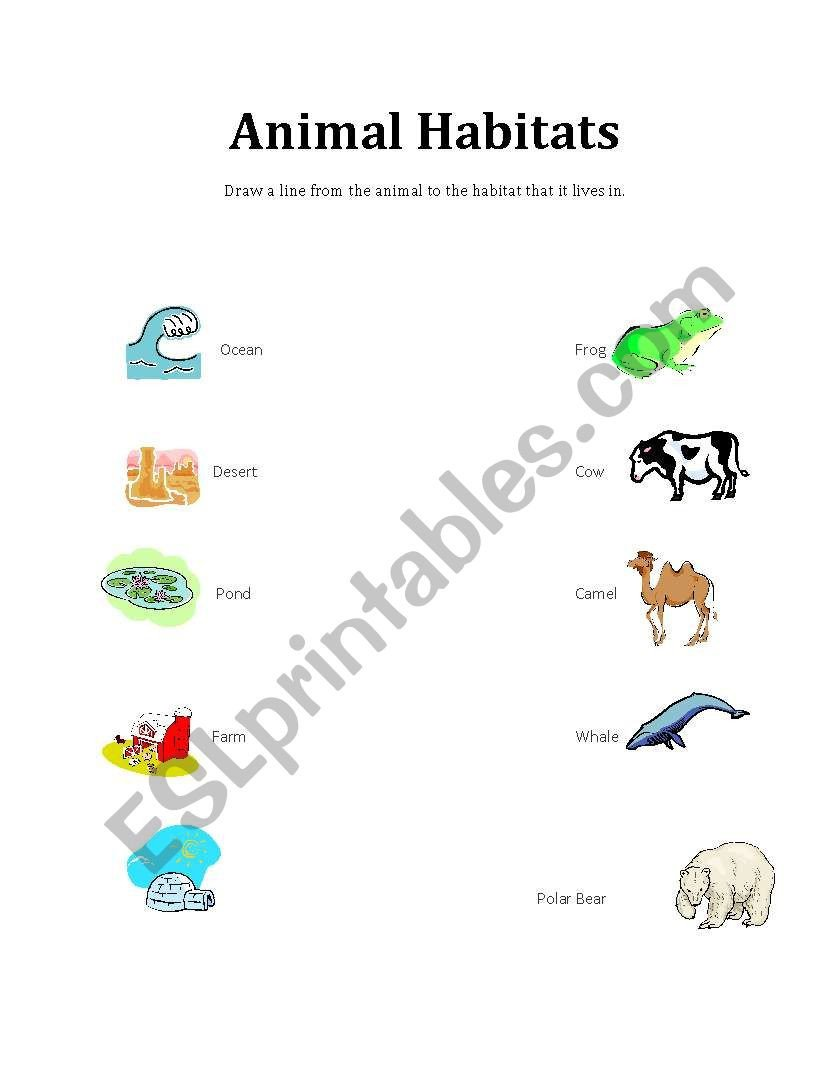 Animal Habitat Worksheets for Kindergarten English Worksheets Animal Habitats Matching to Animals