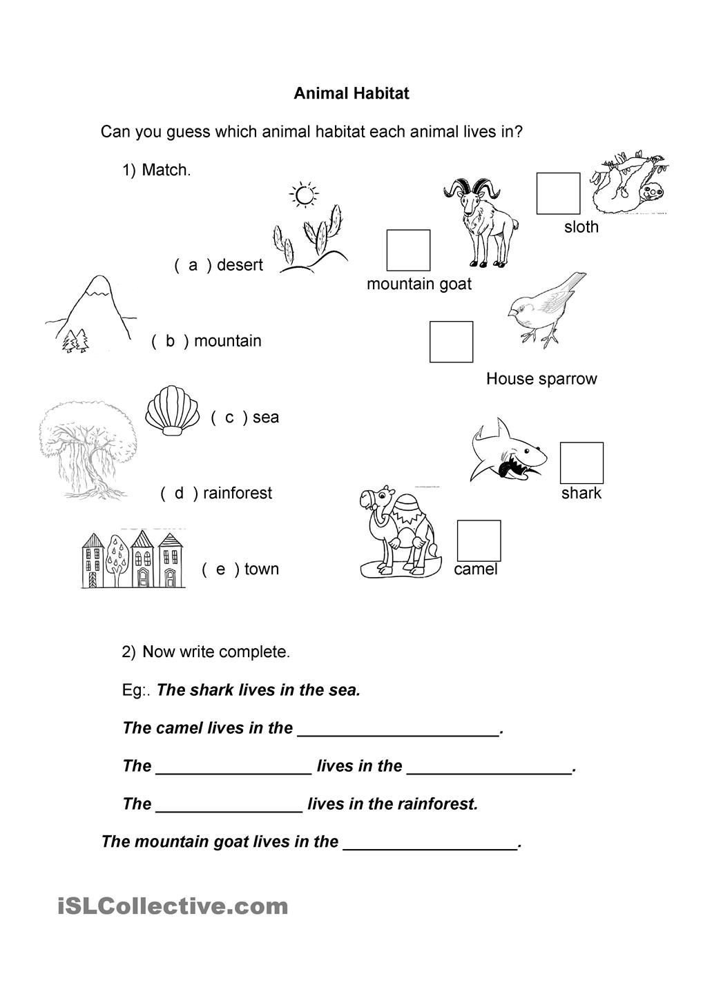 Animal Habitats Worksheets for Kindergarten Animal Habitat