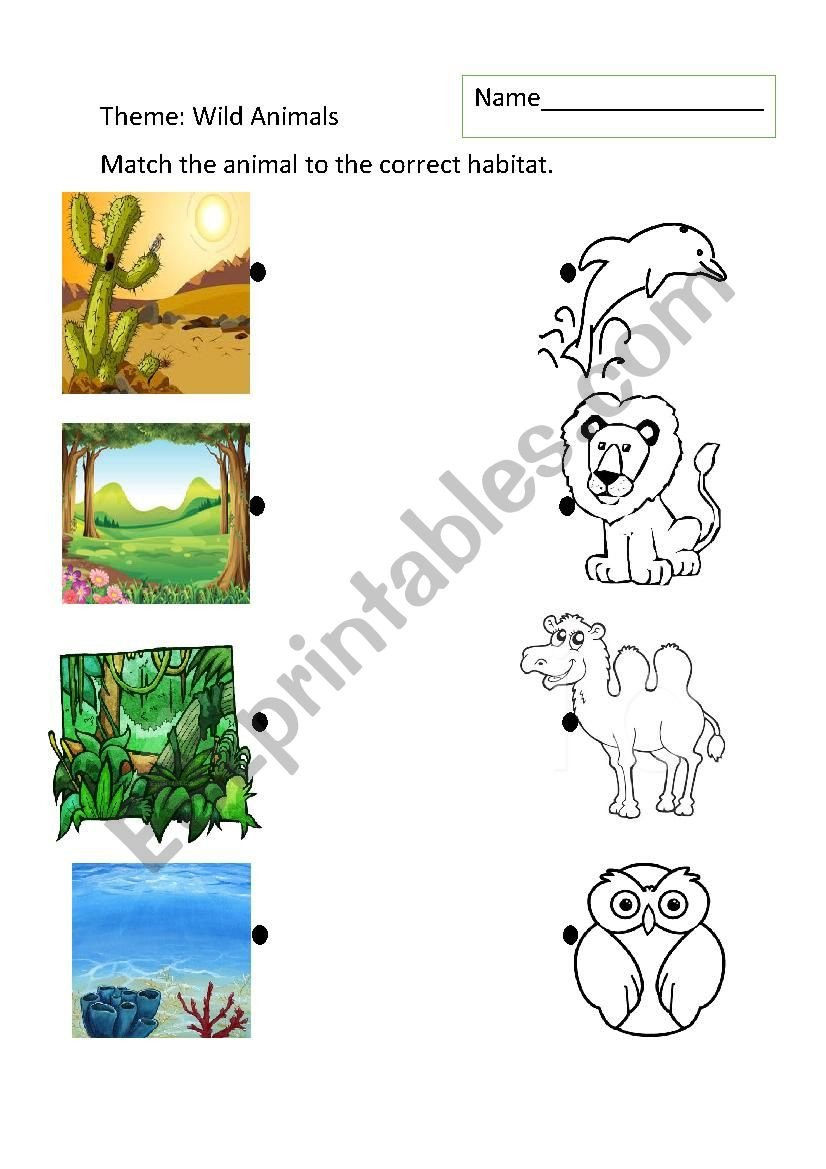 Animal Habitats Worksheets for Kindergarten Animal Habitats Esl Worksheet by Johnnym Worksheets Times