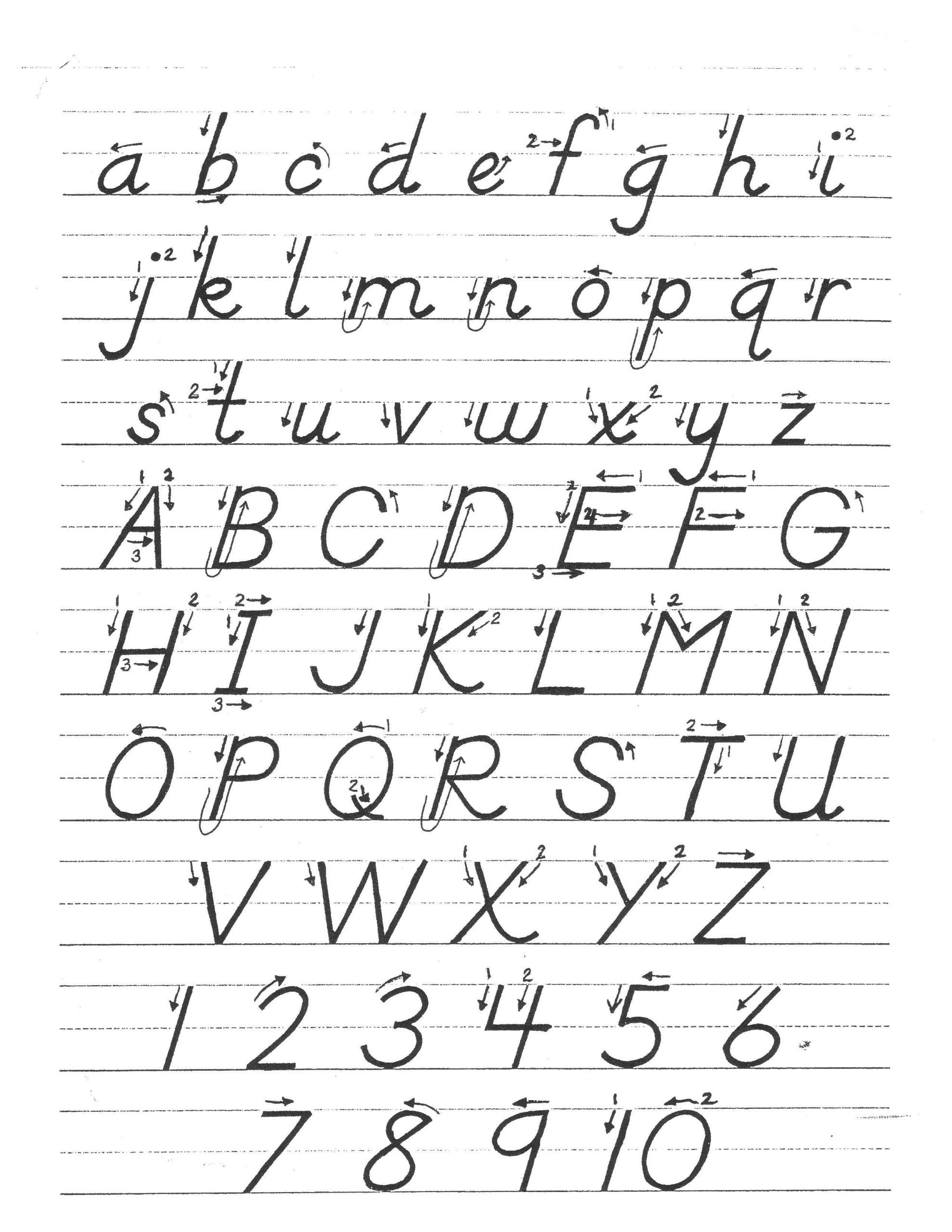 Cursive Worksheets For Adults Resultinfos by D Nealian