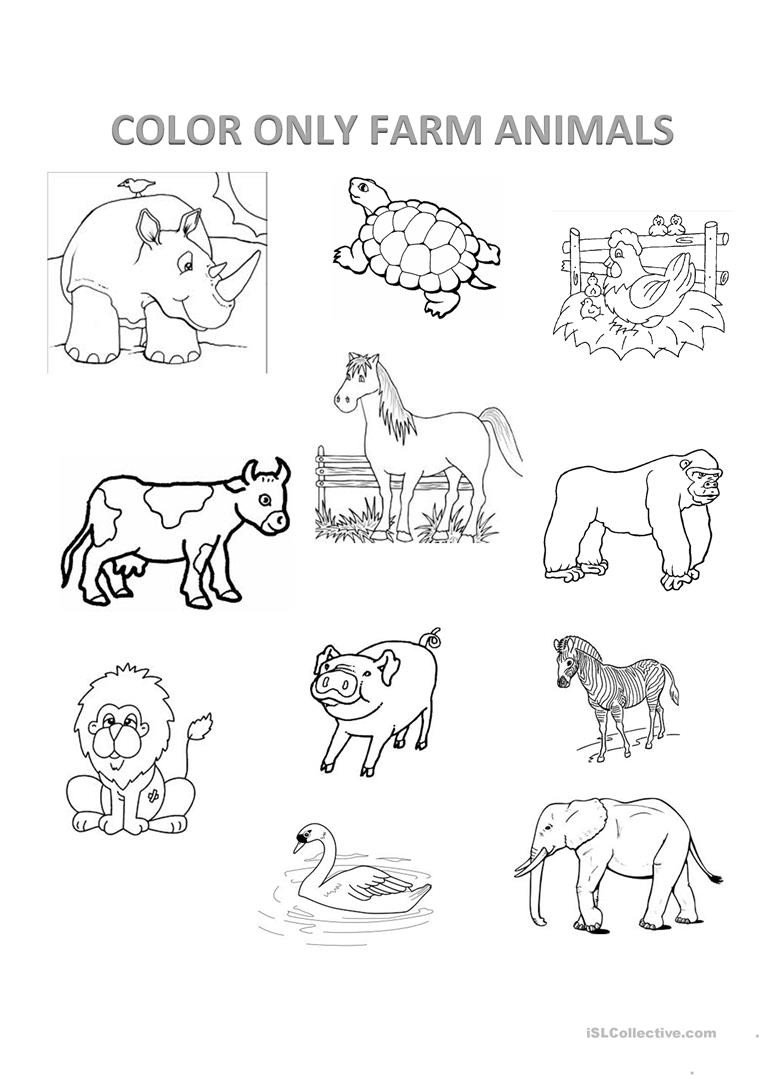 farm animals english esl worksheets fun activities games ture description exercises preschool math squares worksheet printable school classroom behavior chart insect facts for