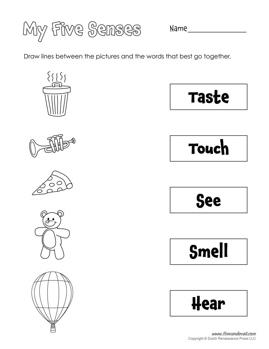 Five Senses Kindergarten Worksheet Printable 5 Senses Worksheet Tim S Printables