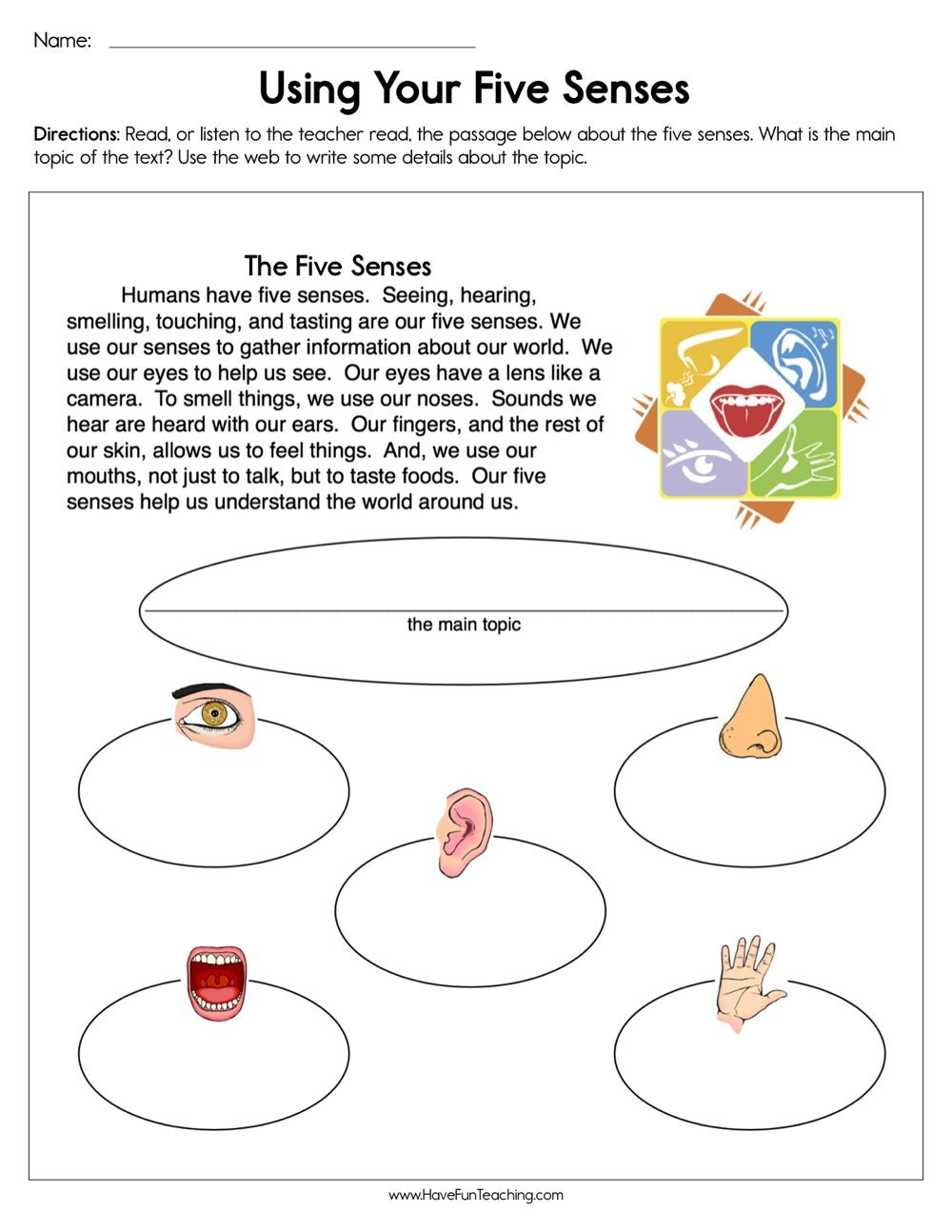 Five Senses Kindergarten Worksheet Using Your Five Senses Worksheet