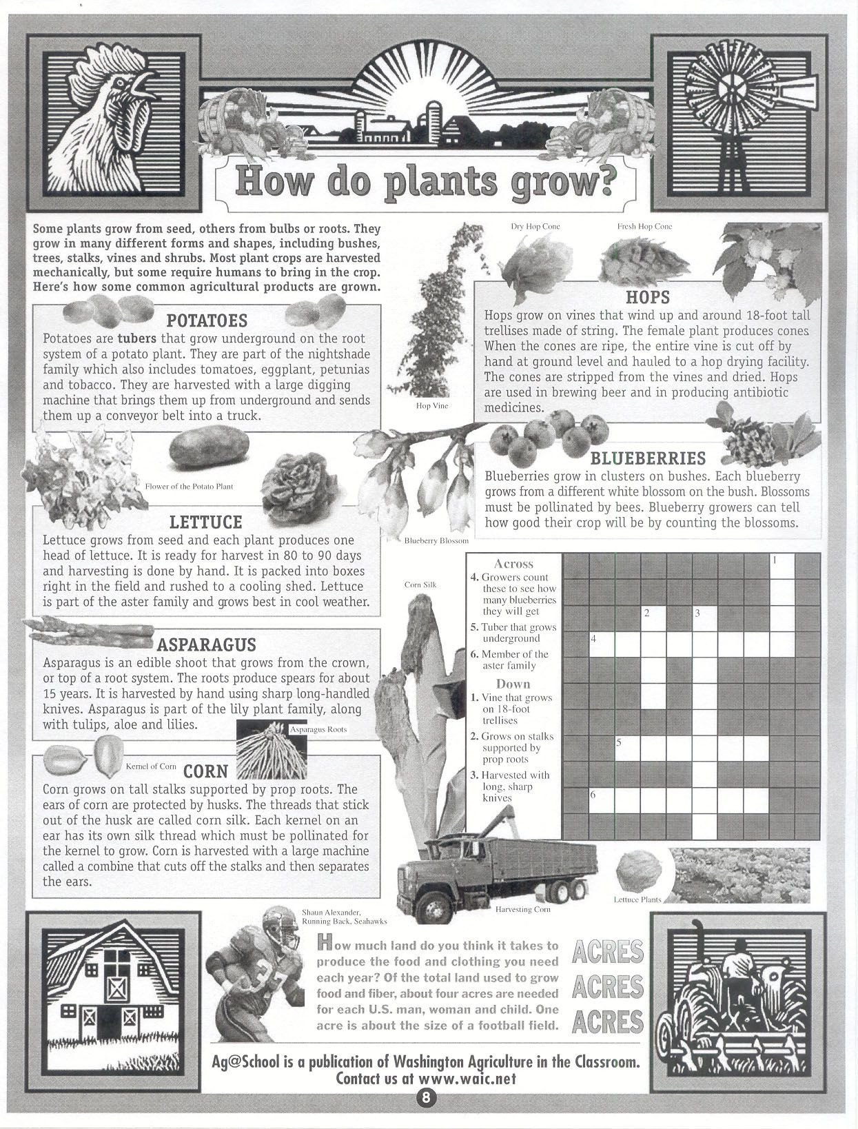 Free Horticulture Worksheets Pin by Laura Rogers On Free Ag Printables