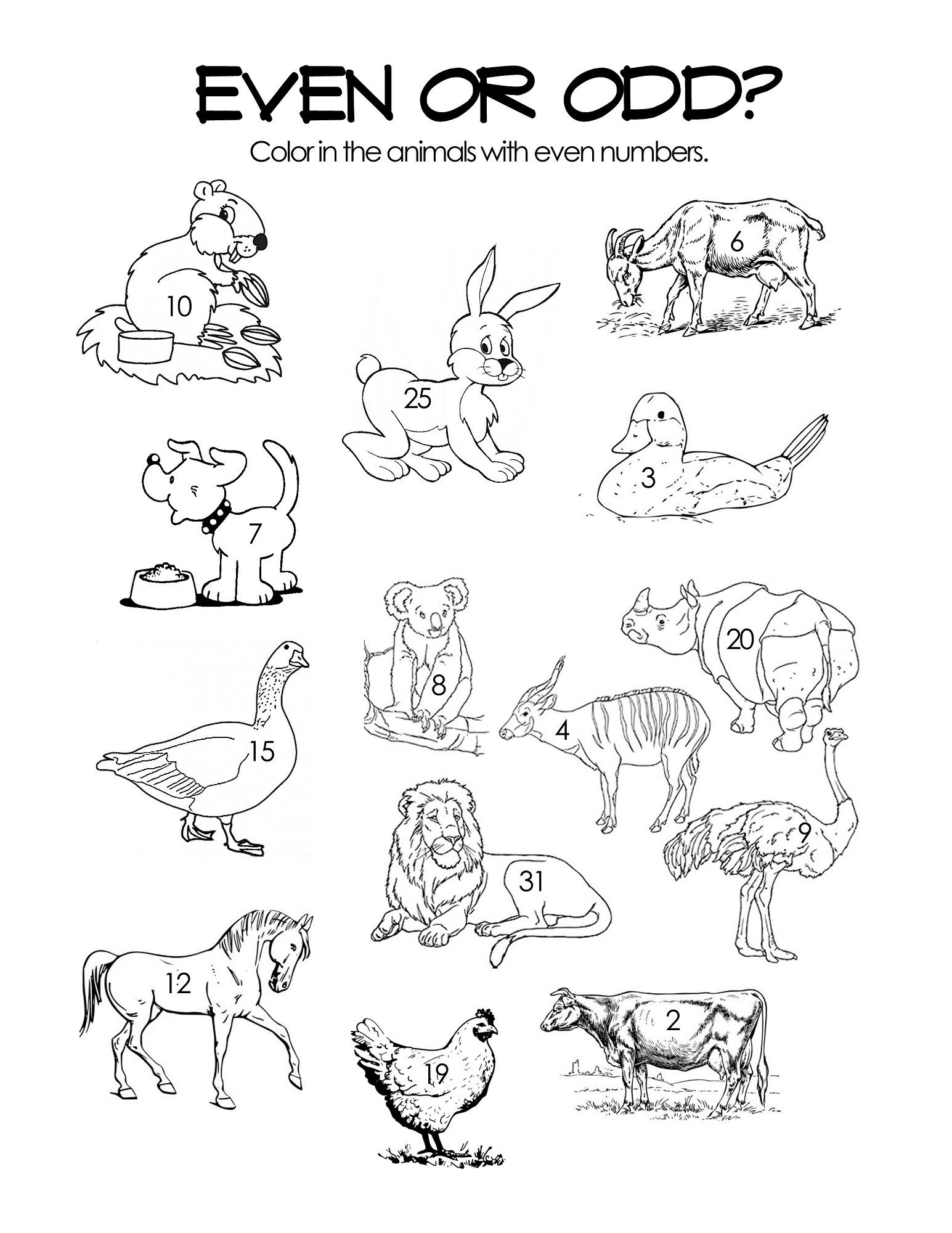 Friendship Worksheets for Kindergarten Diurnal Animals Worksheet Activities Printable Worksheets
