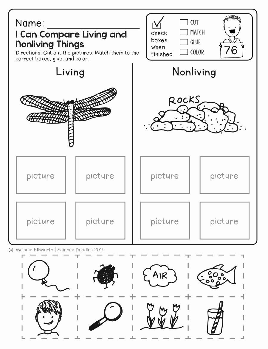 Kindergarten Science Worksheets Free Animal Coloring Pages for 1st Grade Fresh Freebie No Prep