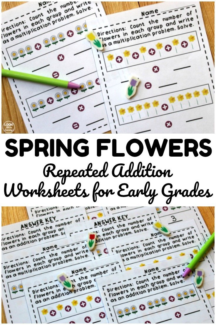 Use these flower repeated addition worksheets to help early grade students practice adding and basic multiplying