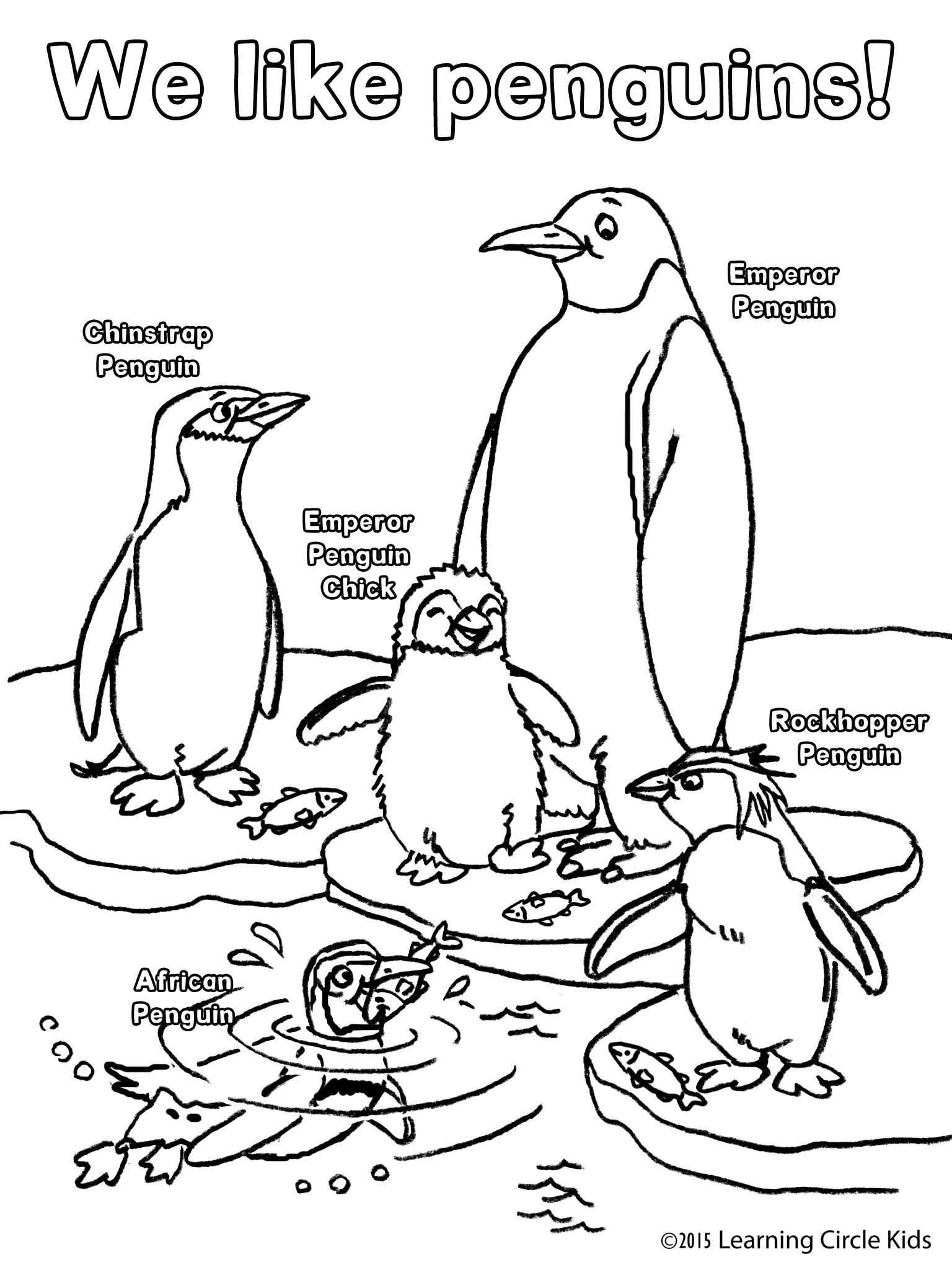 Penguin Worksheets for Kindergarten Free Penguin Coloring From Http Readerbee High School Anger