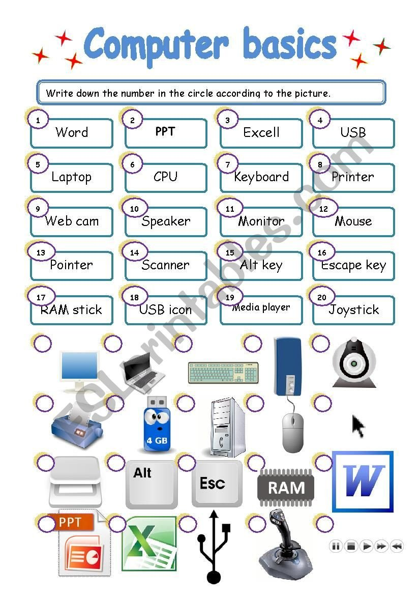 Printable Computer Worksheets Puter Basics Esl Worksheet by Lorymorei