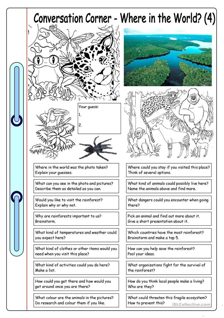 Rainforest Worksheets for Kindergarten Conversation Corner where In the World 4 Rainforest