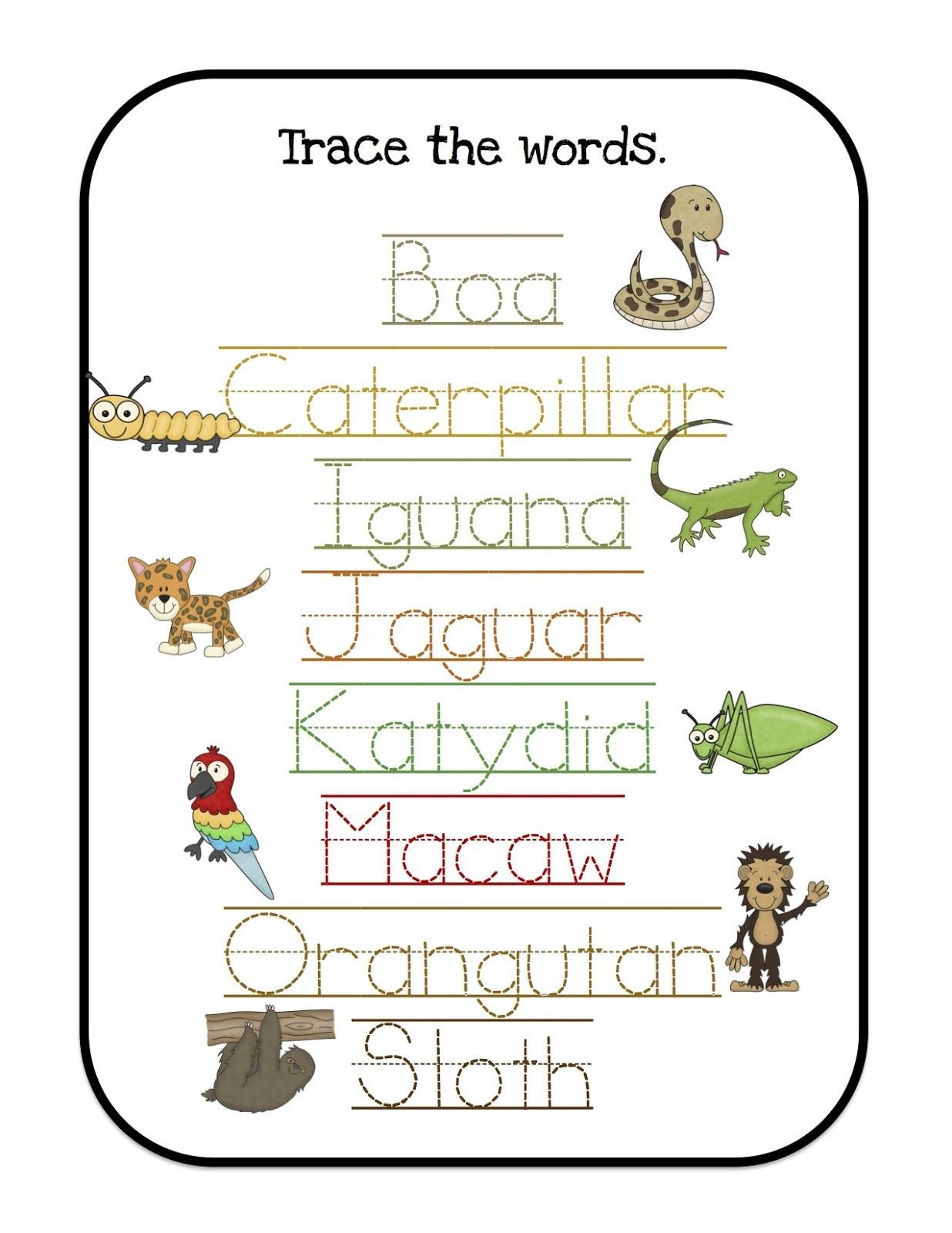 Rainforest Worksheets for Kindergarten Rain Trace the Words 1 236—1 600 Pixels