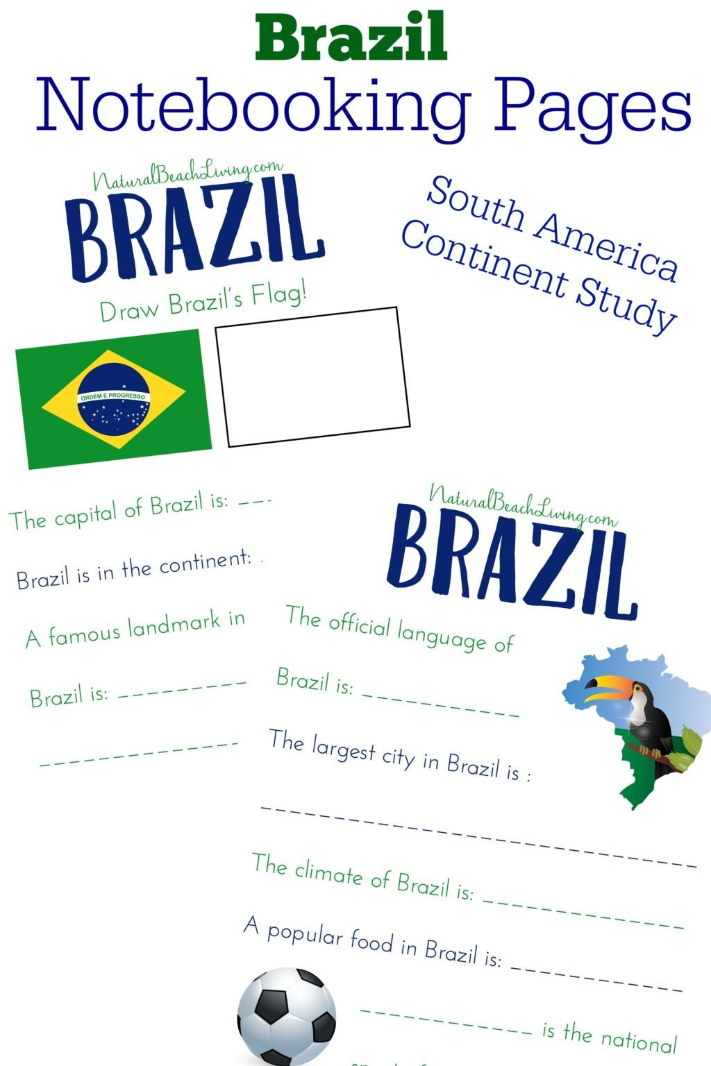 fun worksheets for kids worksheet the best rainforest activities theme natural beach living picture ideas south america brazil pin 1024x1536