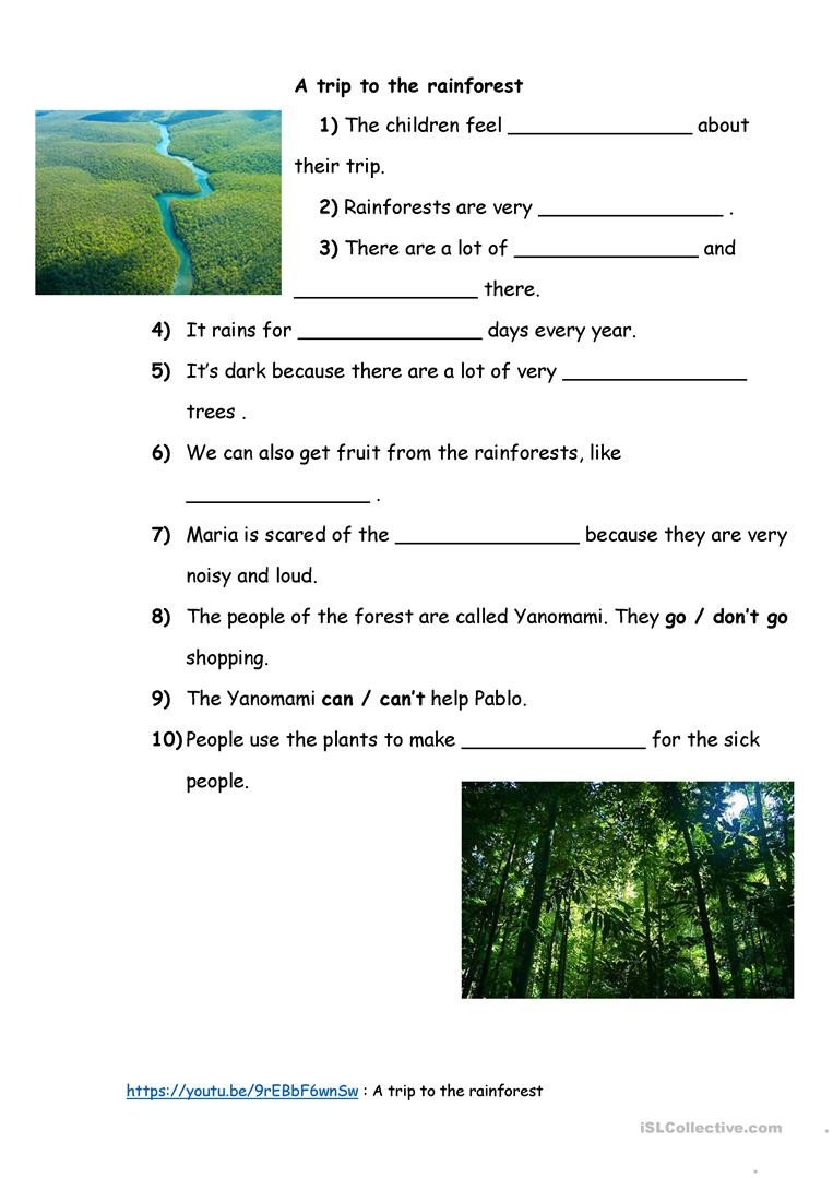 Rainforest Worksheets Free English Esl Rainforest Worksheets Most Ed 13 Results