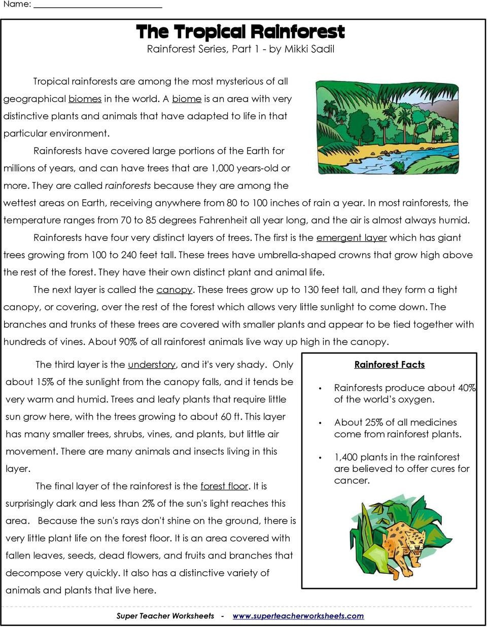 Rainforest Worksheets Free the Tropical Rainforest Rainforest Series Part 1 by Mikki