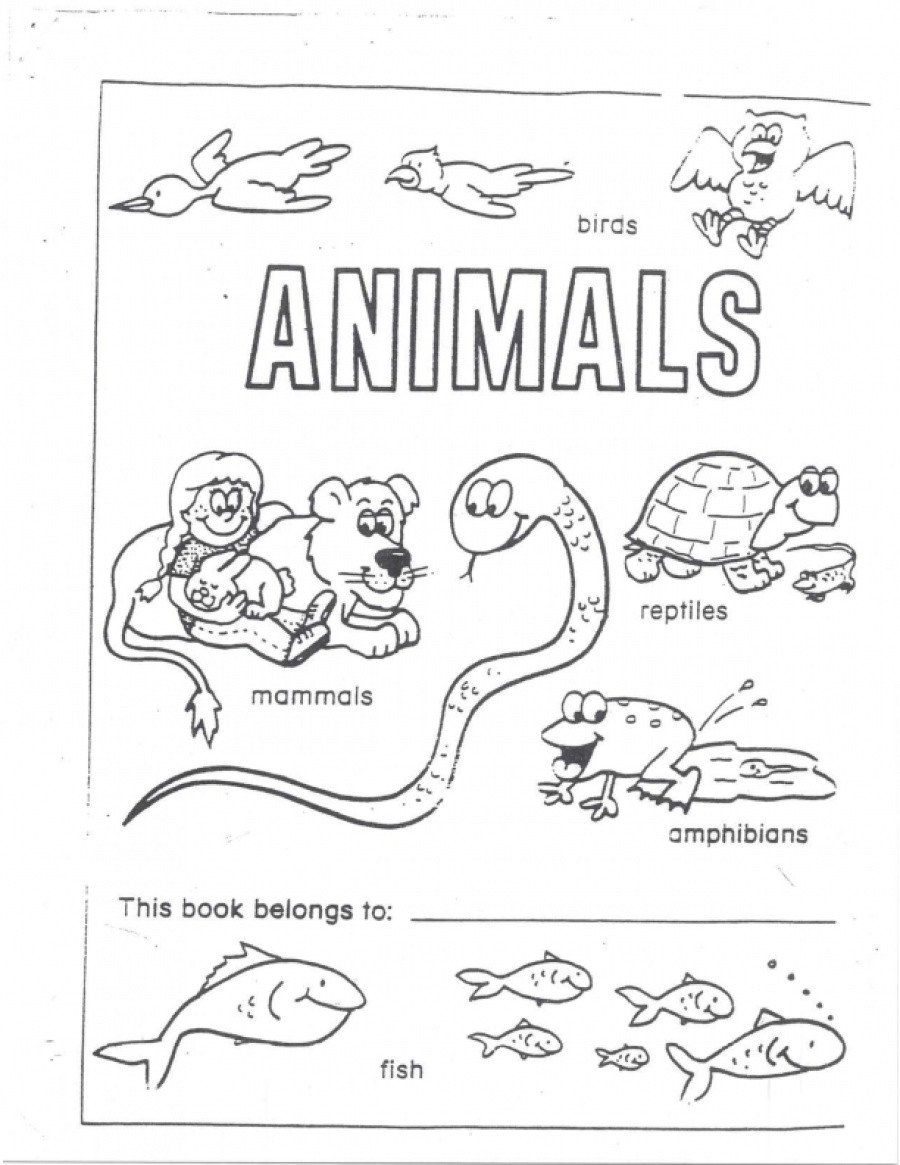 Reptiles Worksheets for Kindergarten Animals A Workbook Of Fish Reptiles Amphibians Birds