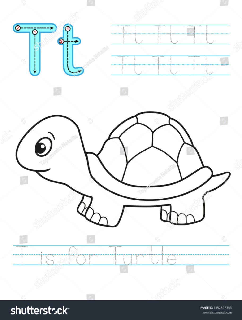 Reptiles Worksheets for Kindergarten Math Worksheet Incredible Printable Activityheets for